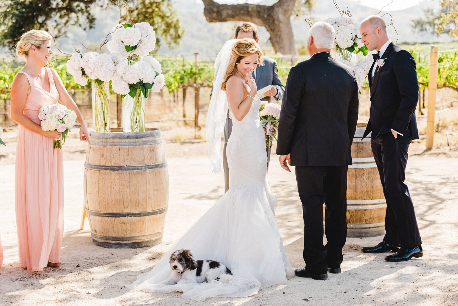 Wedding at Sunstone Winery