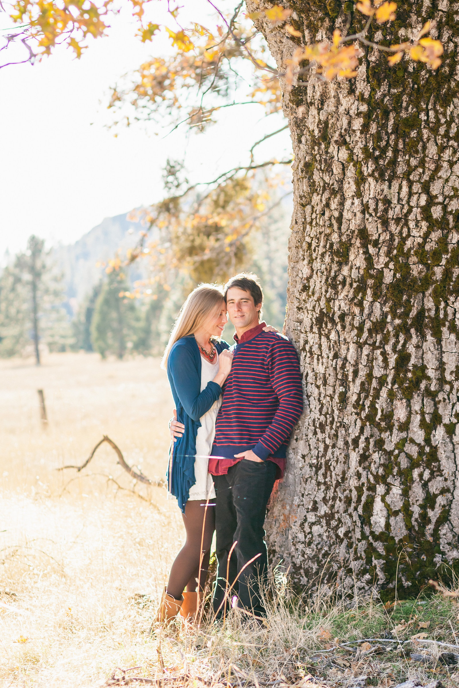Nevada City couple under tree at  Sunset Meadow