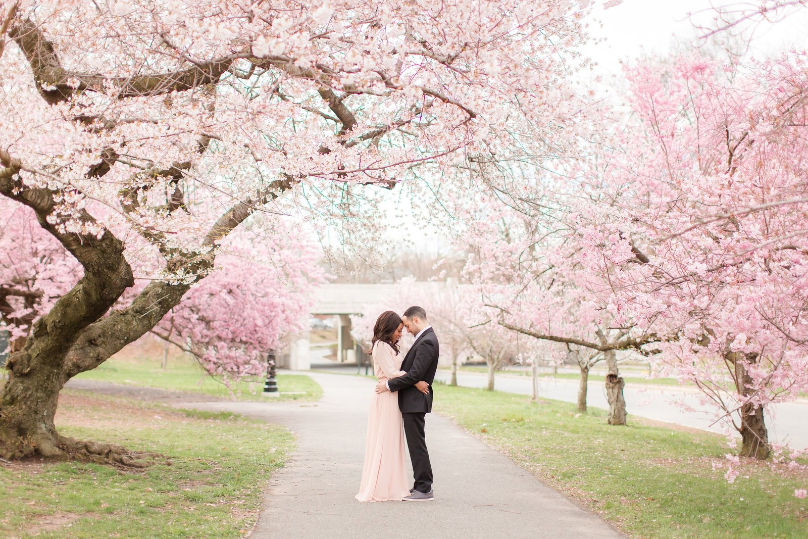 cherry-blossom-engagement_0012
