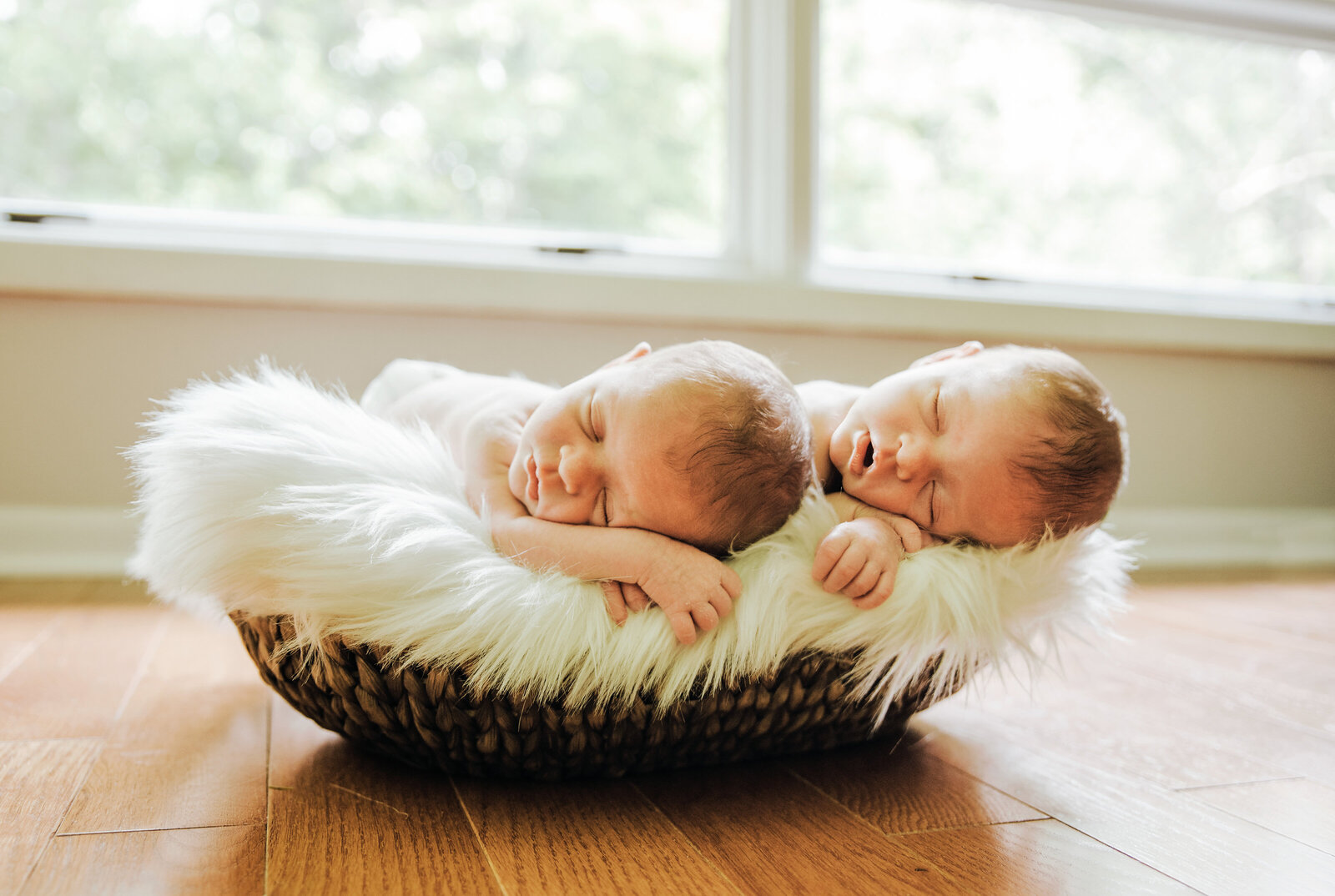 In Home Newborn Twin Sleepy Session (1)