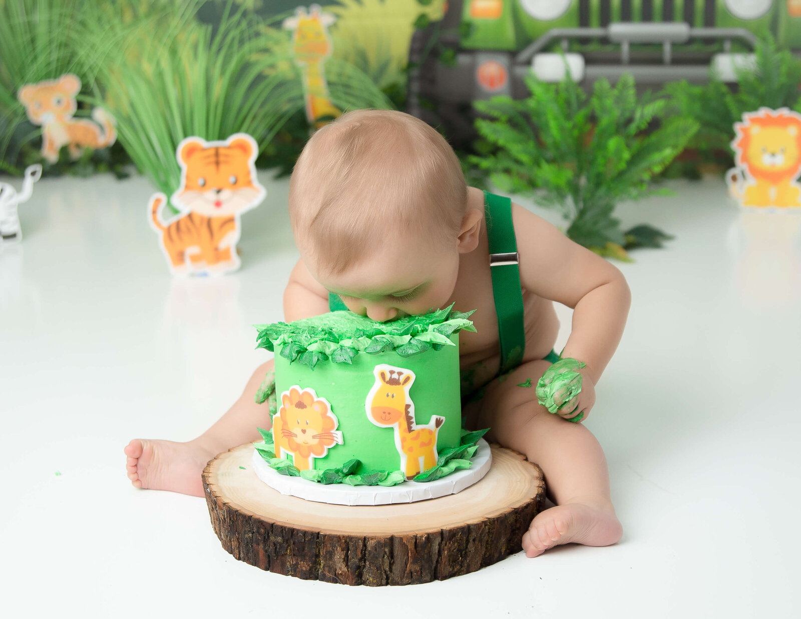 Jungle Safari cake smash at our Rochester, NY studio.