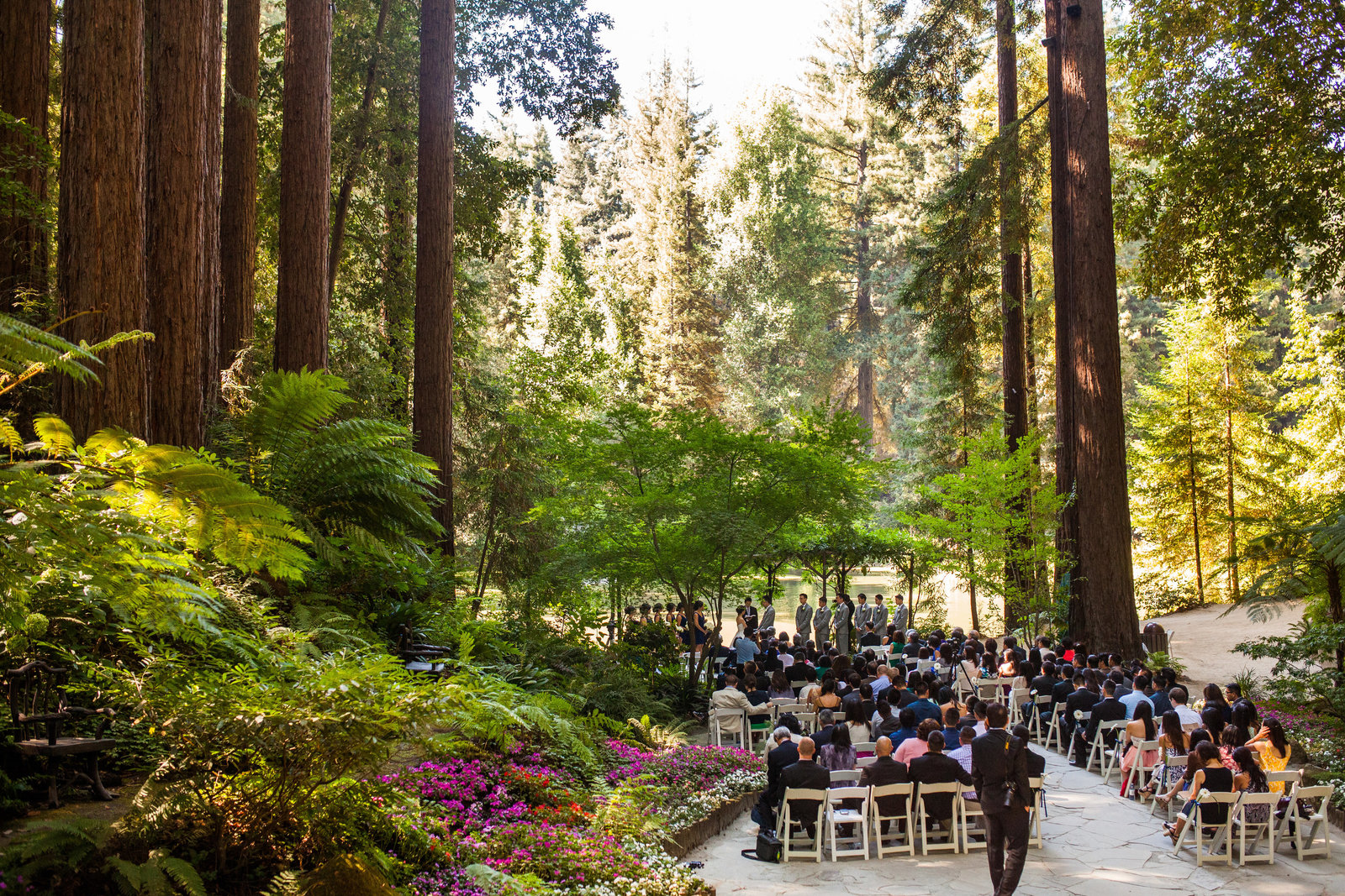 nestldown wedding forest los gatos california 7