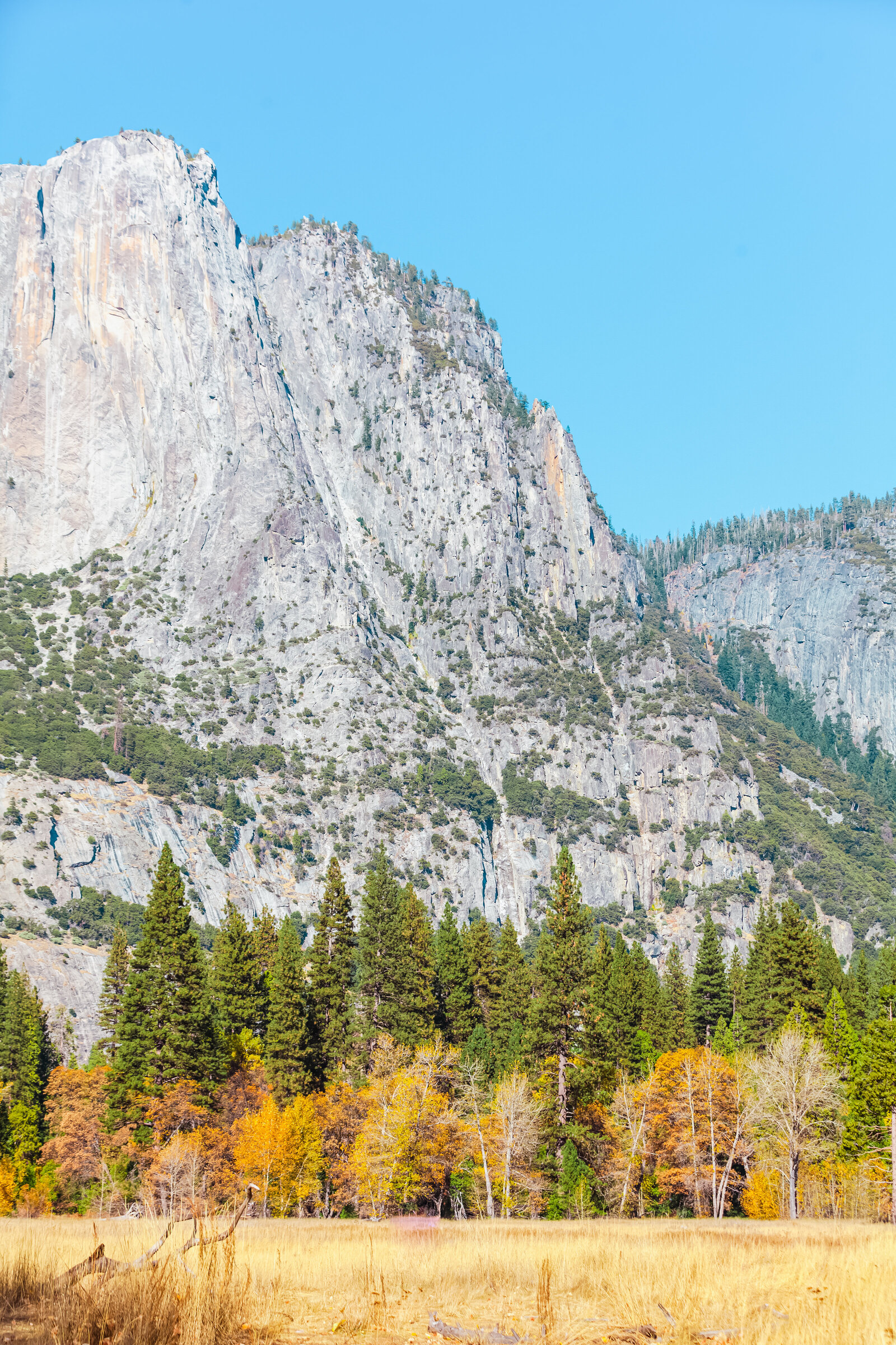 020-KBP-Yosemite-National-Park-El-Capitan-