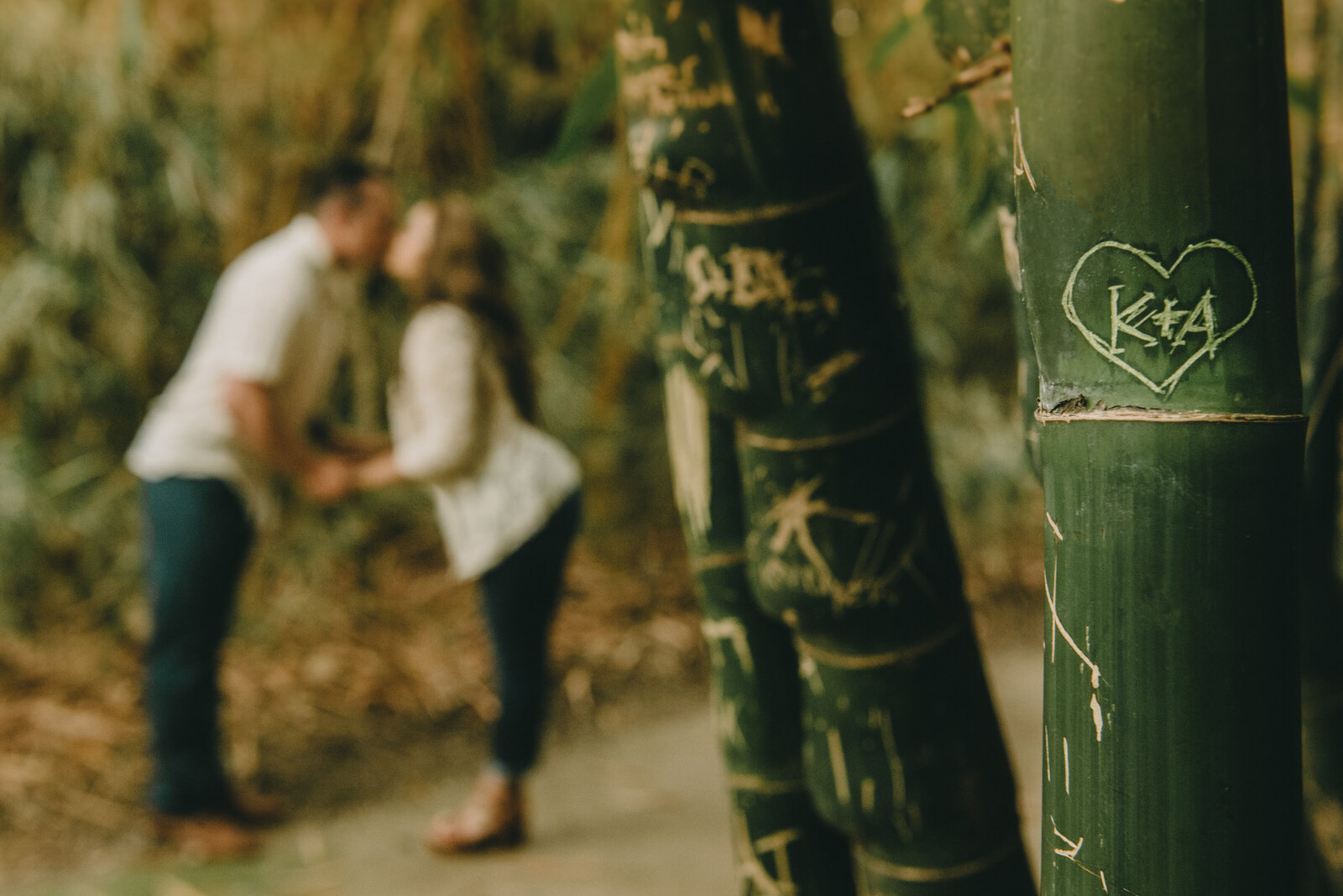 la arboretum engagement photography--100