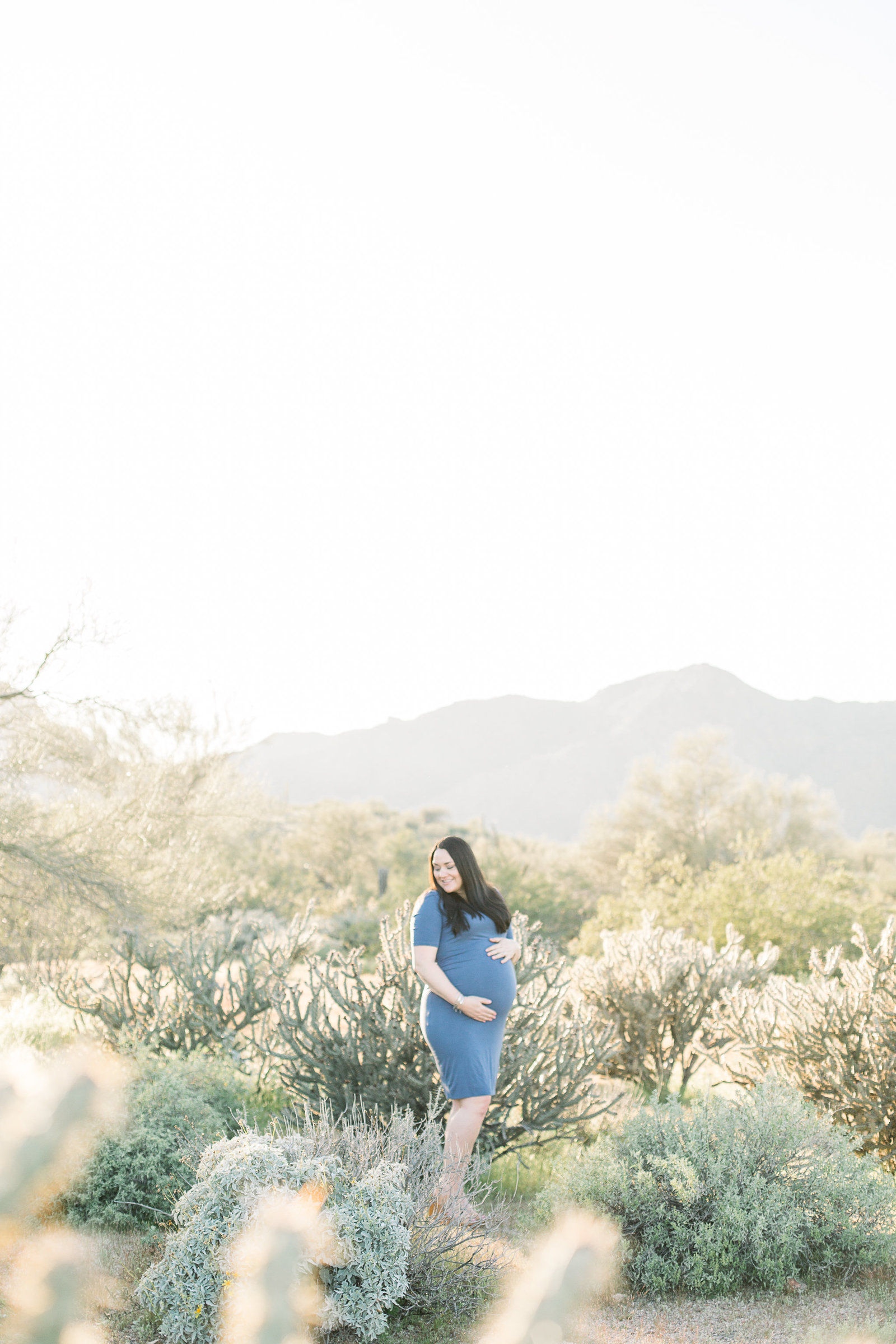 Aly-Kirk-Photo-Mesa-Arizona-Photographer-Desert-Mountain-Maternity-0001