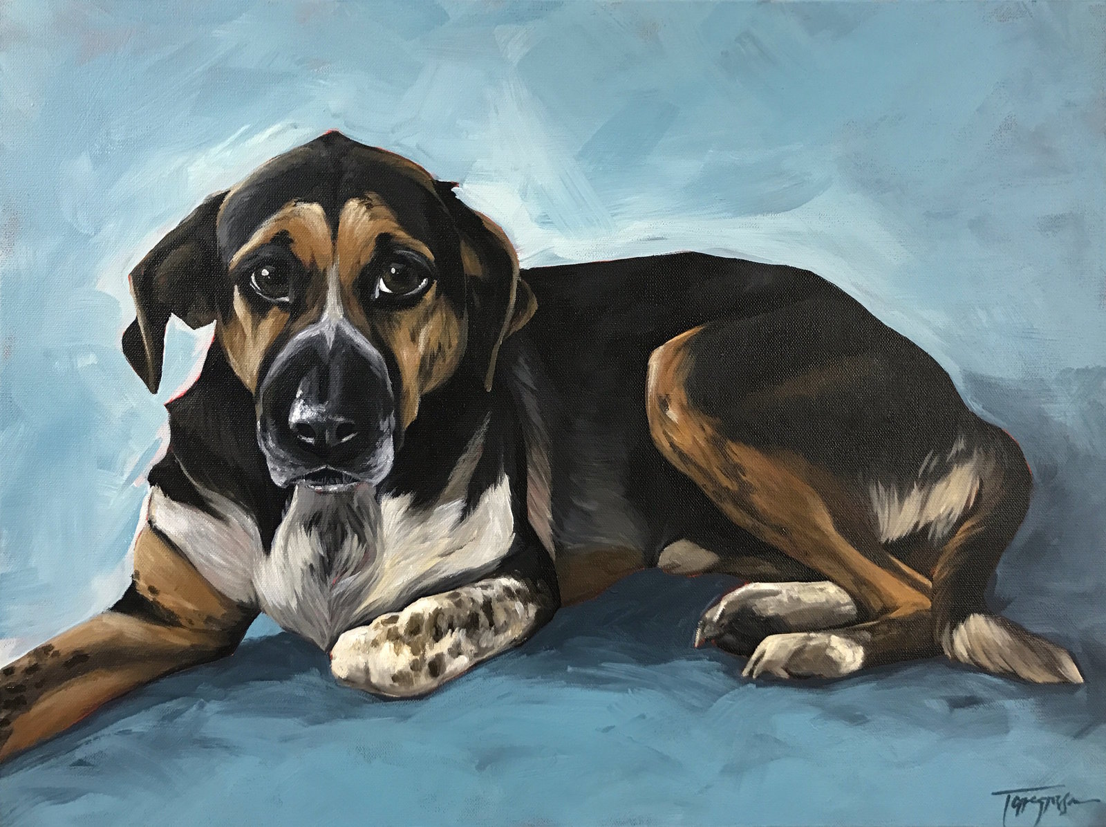 Torregrossa Fine Art Custom Pet Portrait by Stephanie T Gaffney Hound Dog