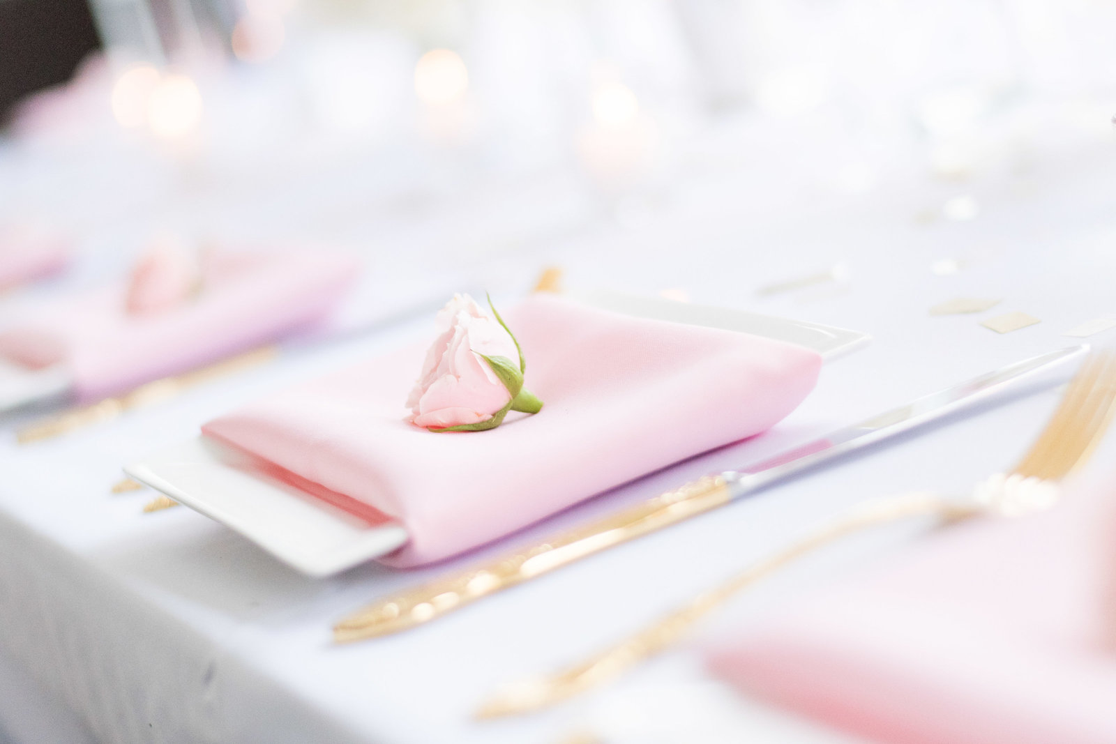 charlotte wedding photographer shot of Detail shot of place settings