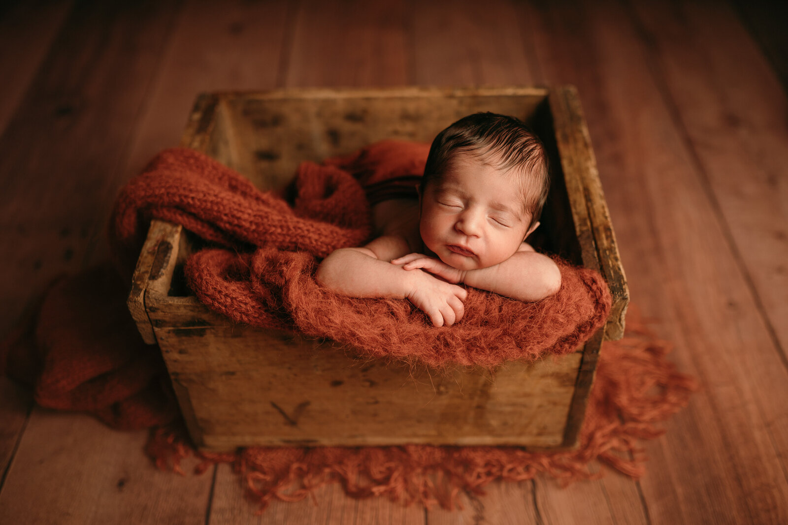 annapolis,md newborn photographer