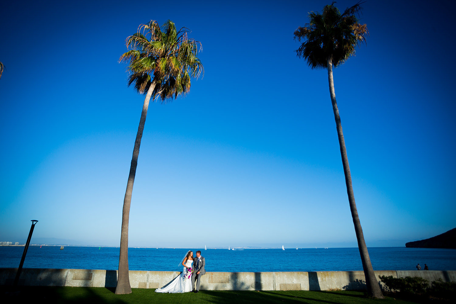 bride and groom with palm trees at ocean view room