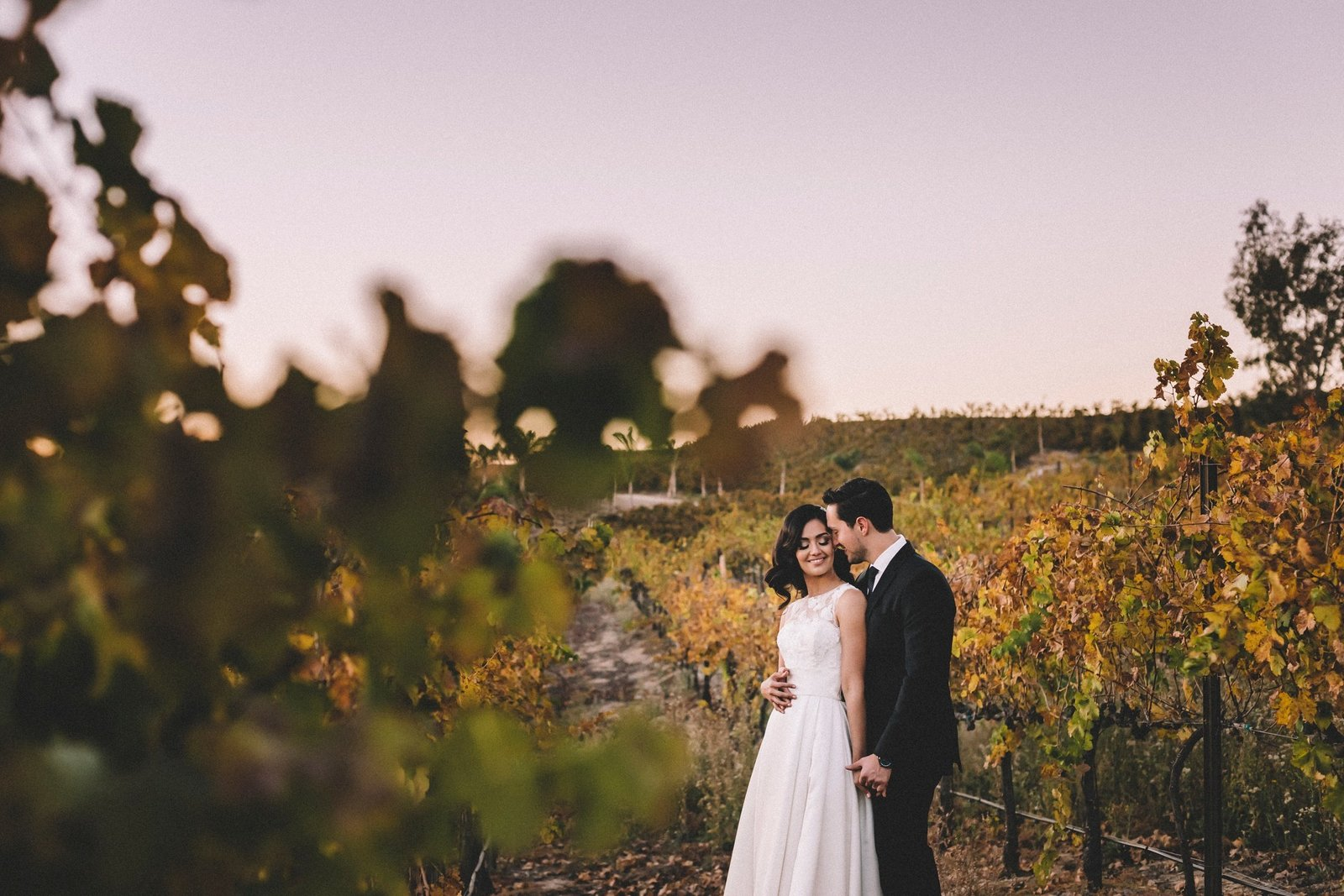 Falkner Winery Wedding (2)