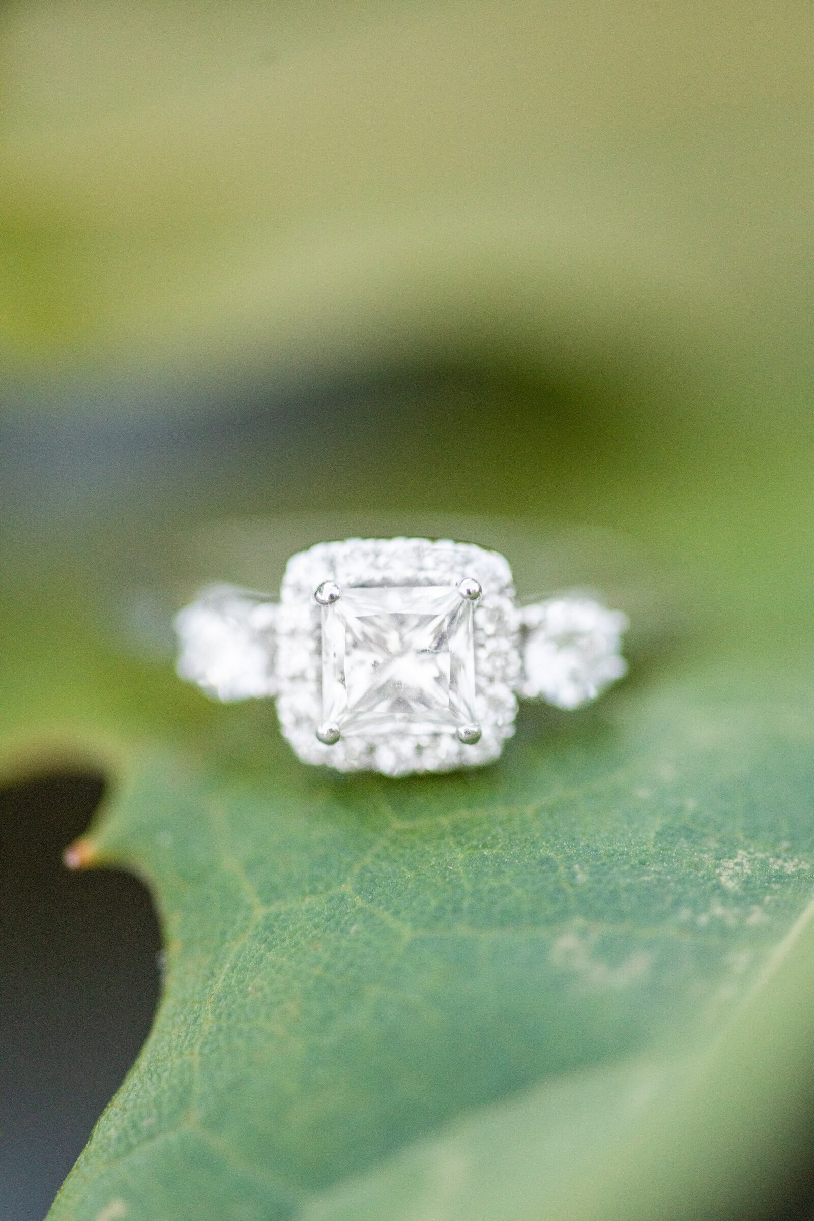 square cut engagement ring on green leaf