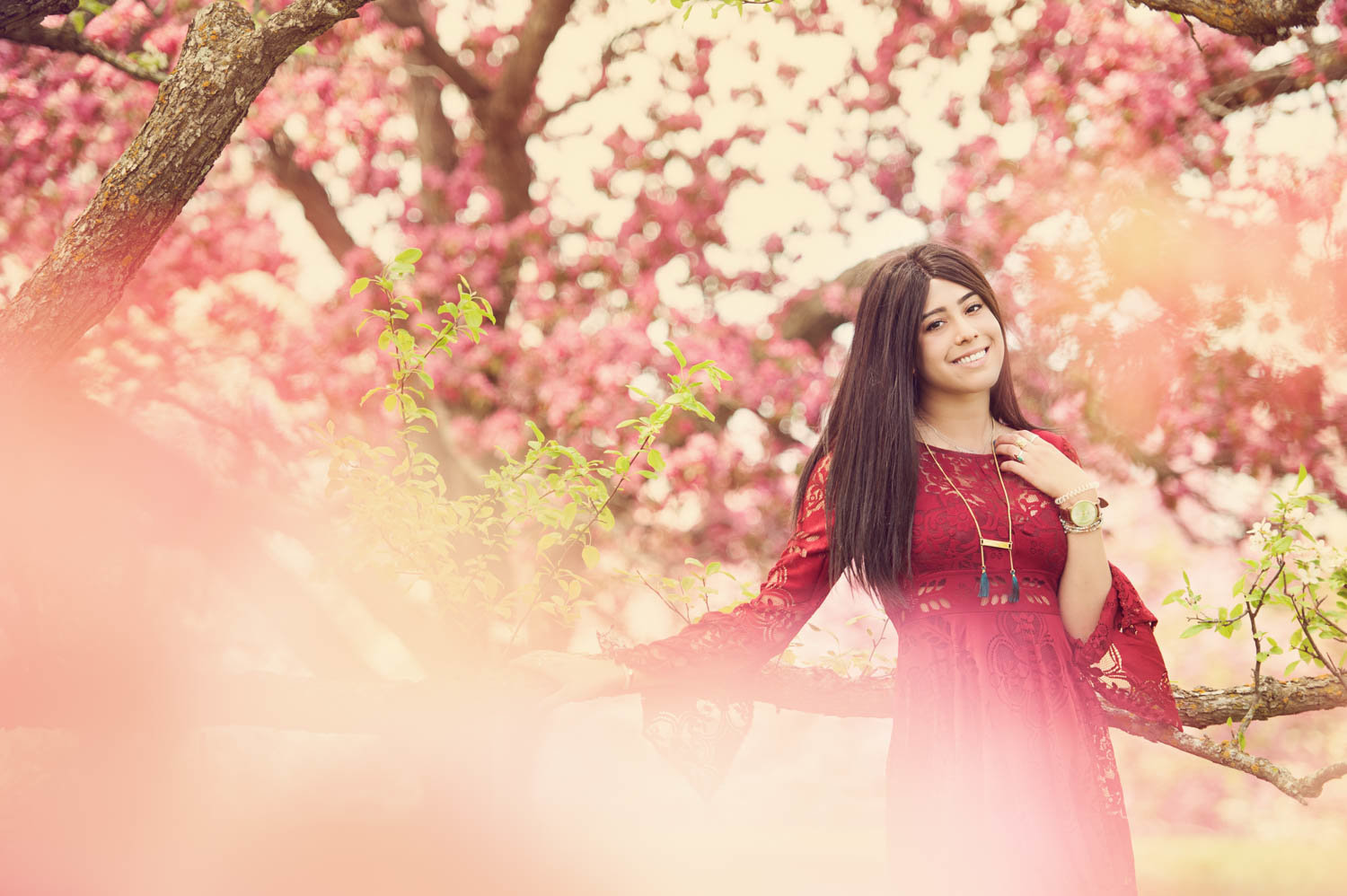 Colorful senior picture of girl with apple blossom trees