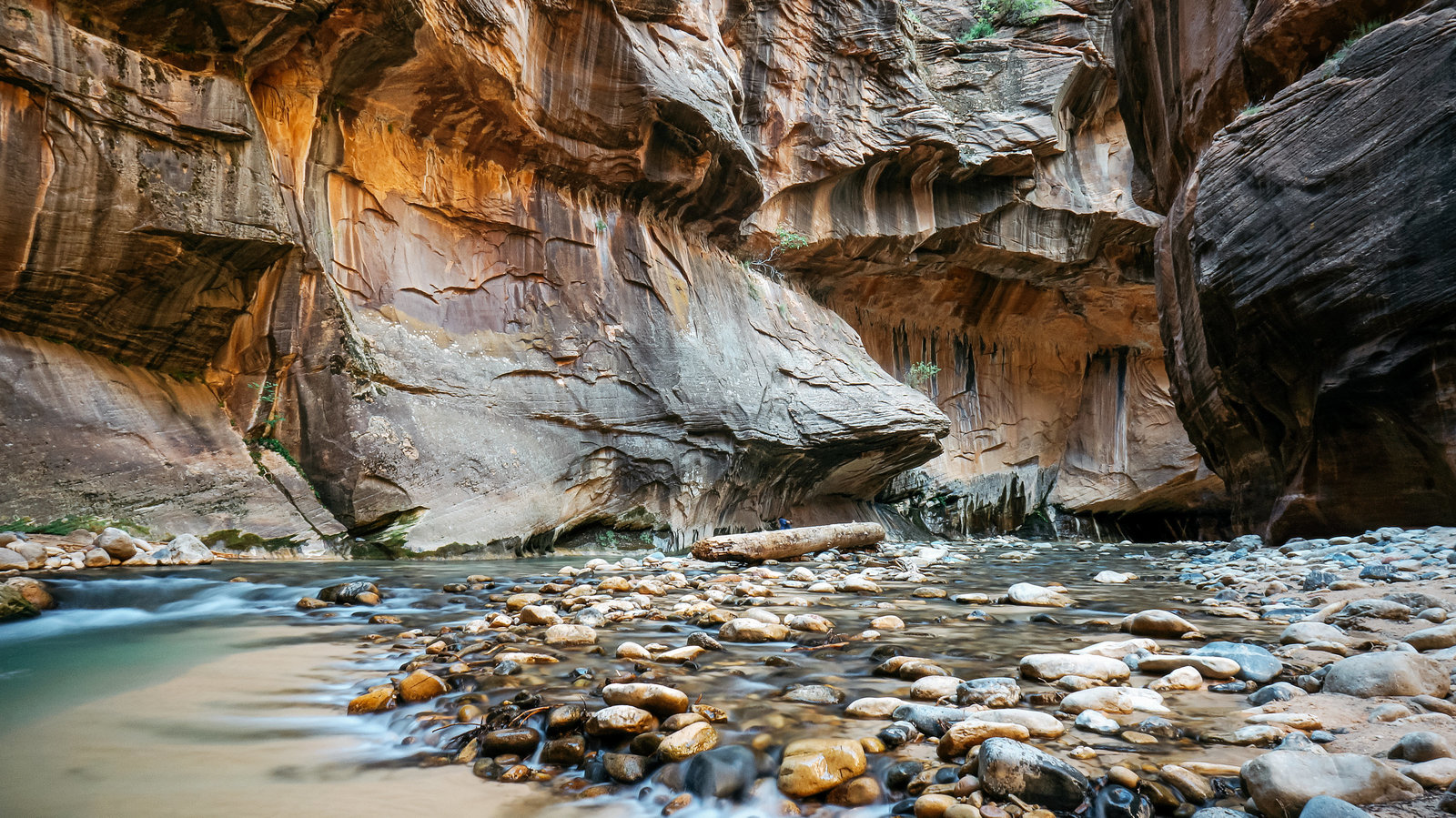 Sasha_Reiko_Photography_Travel_Utah_Arches_Canyon_Lands_Zion_Grand_Canyon-55