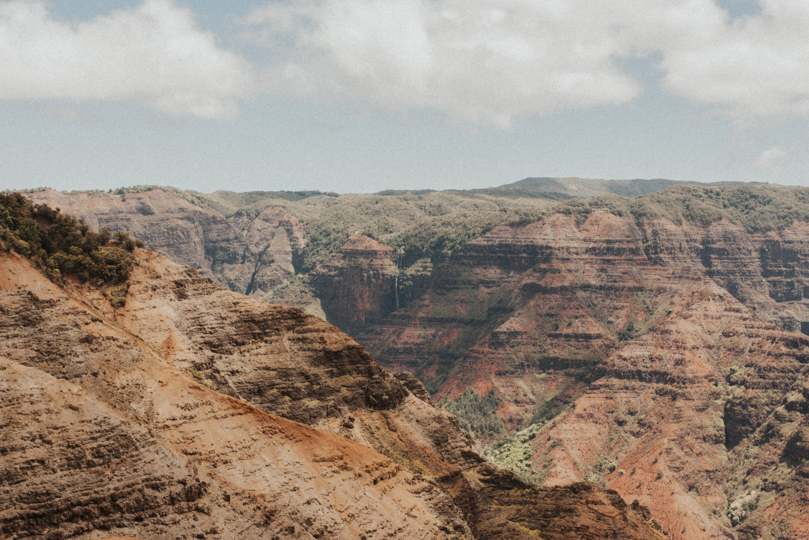 Waimea Canyon, Kauai Hawaii Elopement