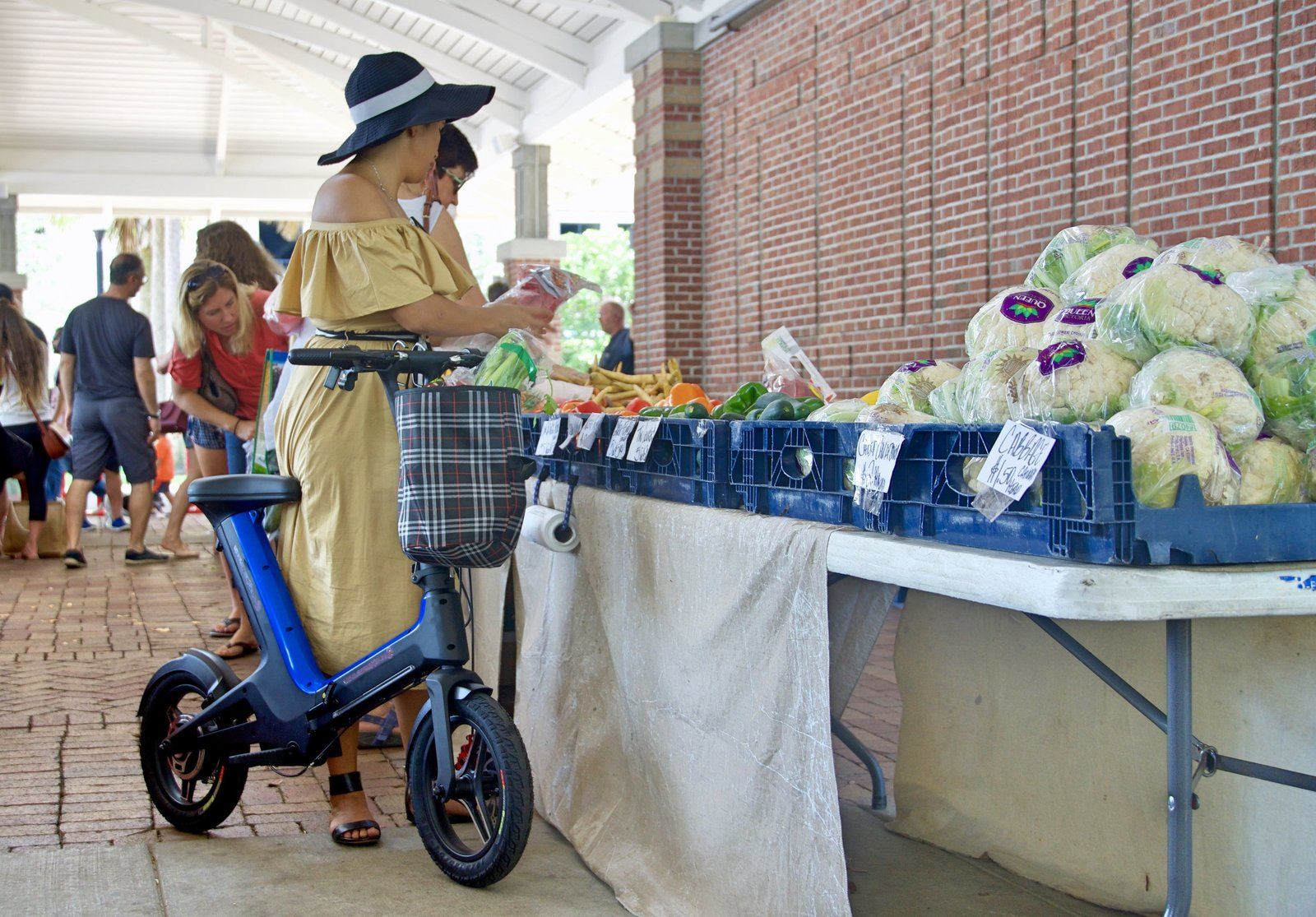 Blue Go-Bike M3 at farmers market