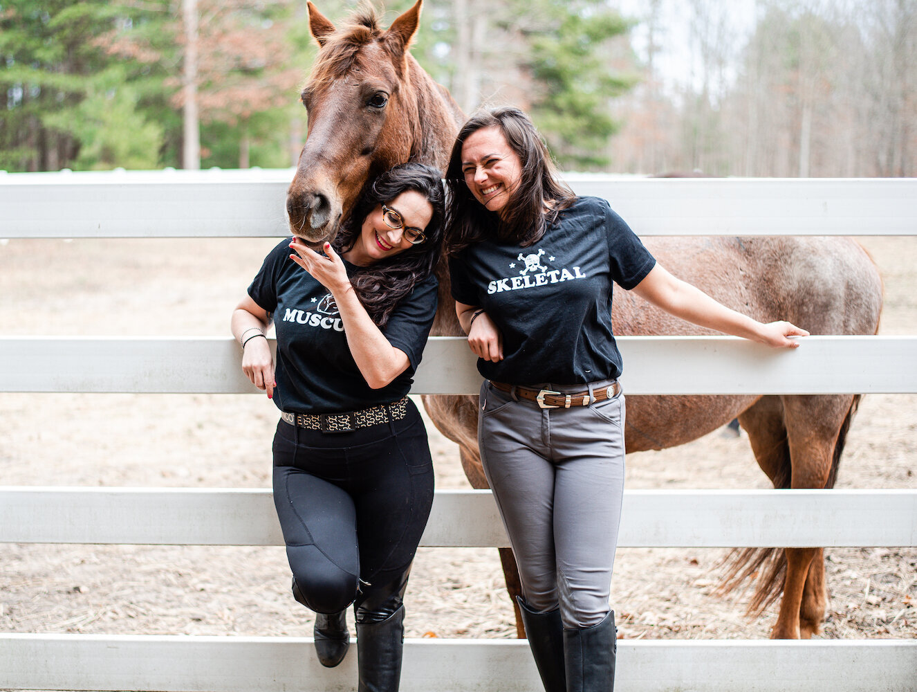 Farm-and-Fir.Animal-Bodywork-and-Aromatherapy-Equestrian-Brand-Shoot.26