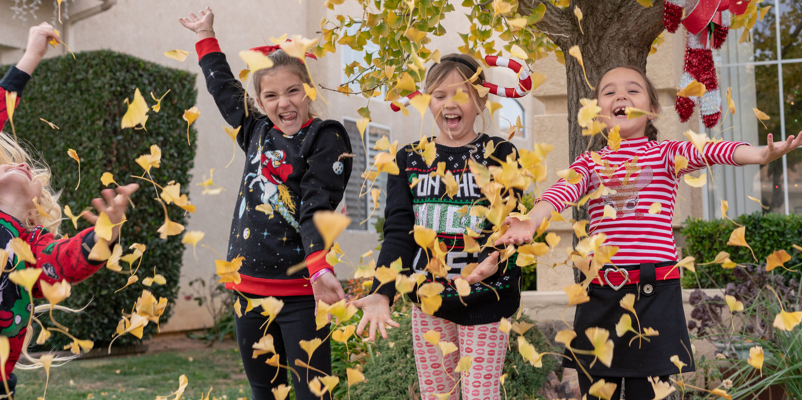 Lifestyle Portrait of kids jumping and throwing leaves