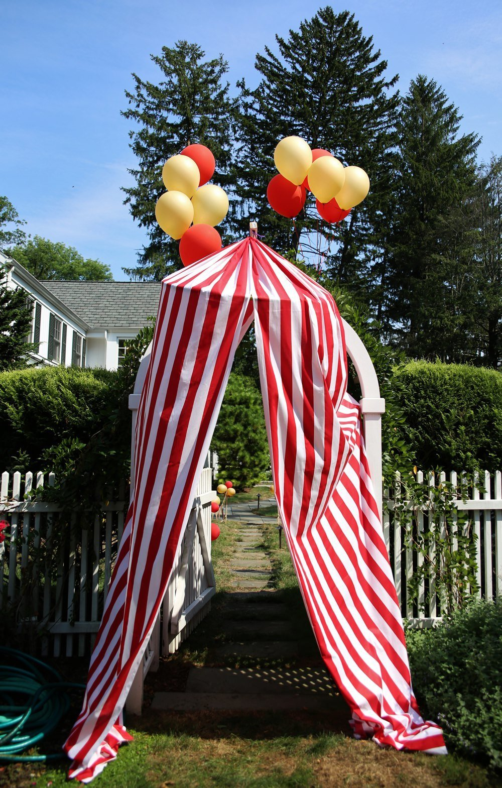 ct_party_planner_circus_birthday_0032