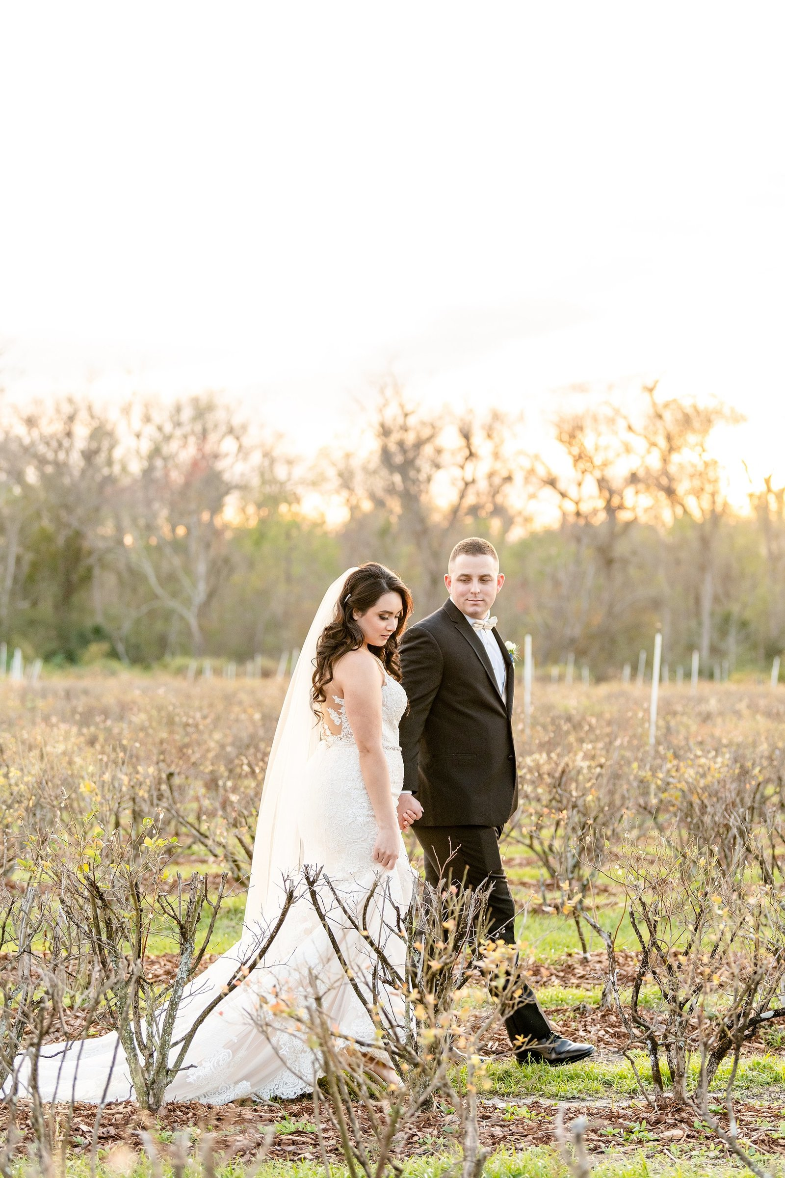 Ever After Farms Blueberry Barn | Wedding Photographer