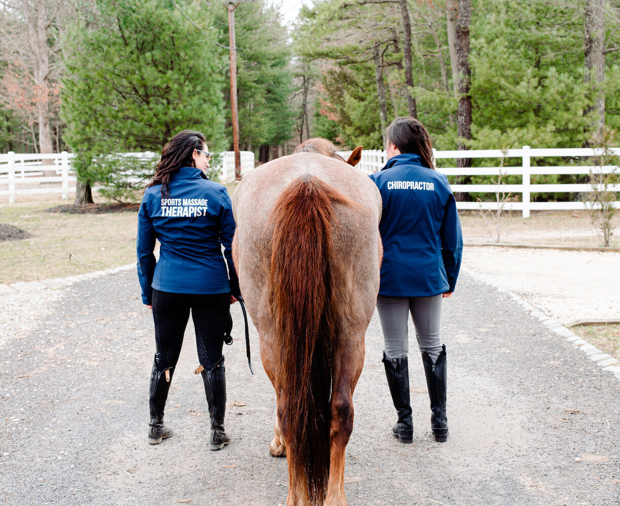 Farm-and-Fir.Animal-Bodywork-and-Aromatherapy-Equestrian-Brand-Shoot.23