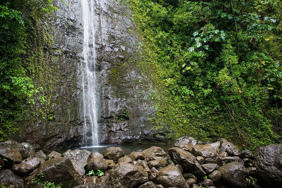 The Manoa Falls hiking trail ends in a beautiful tropical waterfall