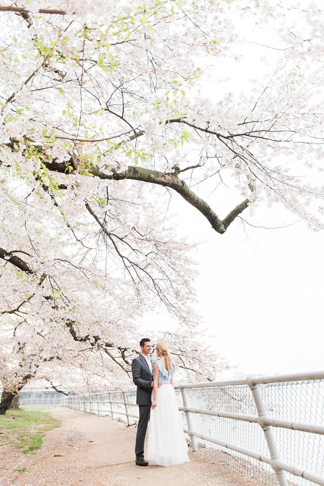 WASHINGTON_DC_CHERRY_BLOSSOMS_L+EJOFFOTO_-85