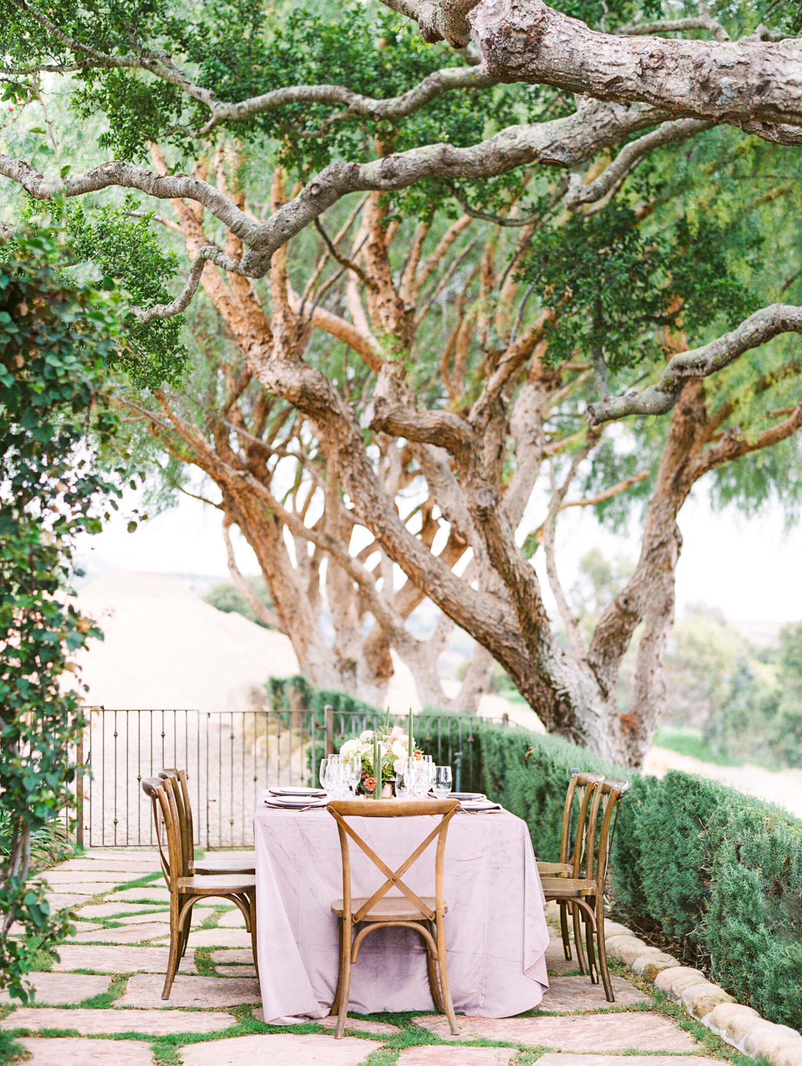Santa-Ynez-Wedding-Reception-Dinner-Table-Babsie
