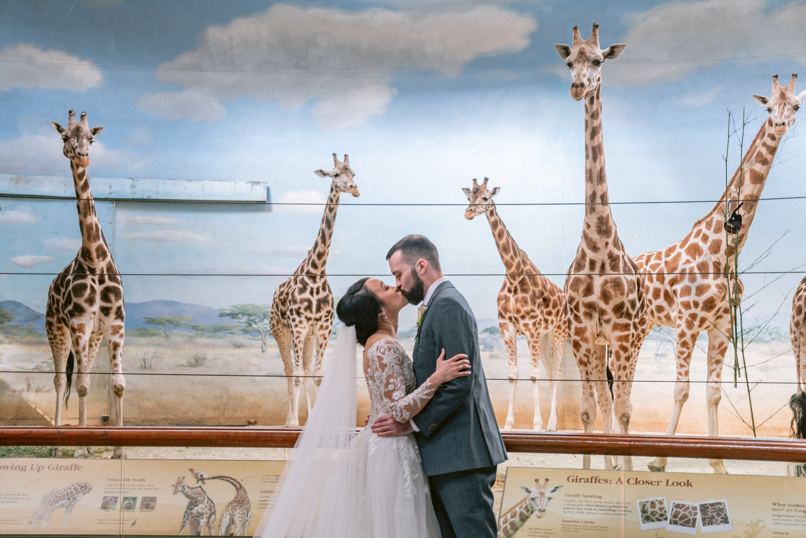 bronx-zoo-wedding-photo-at-giraffe-exhibit-by-suess-moments
