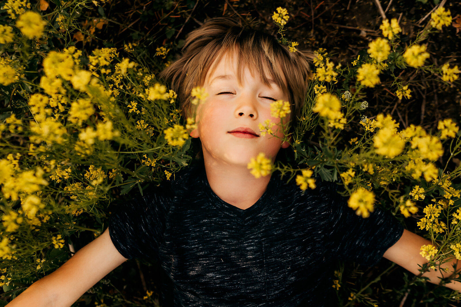 boy laying in yellow flower field