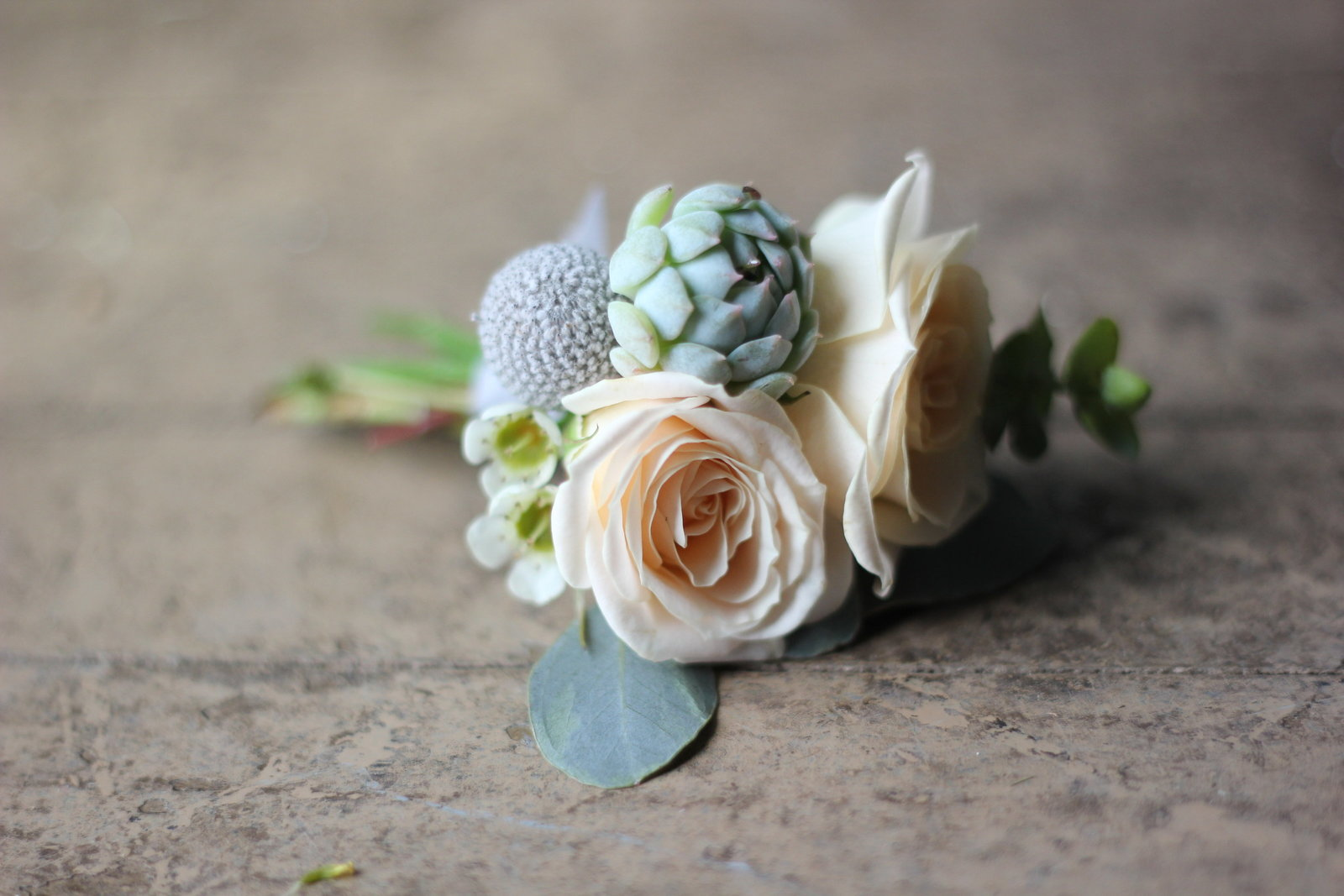 spring-wedding-flowers-succulents-milwaukee-wisconsin-florist
