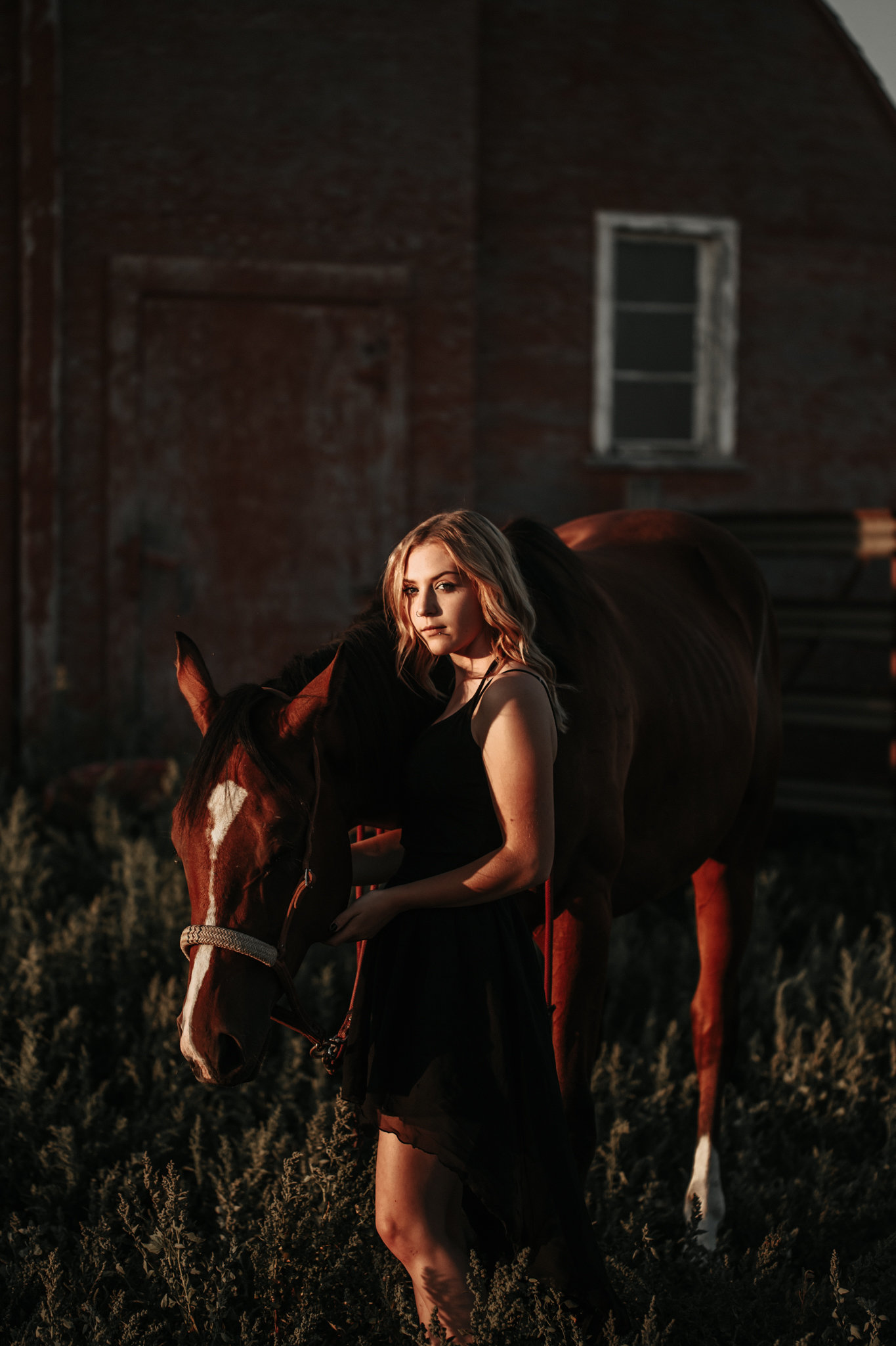 portrait-farm-session-moose-jaw