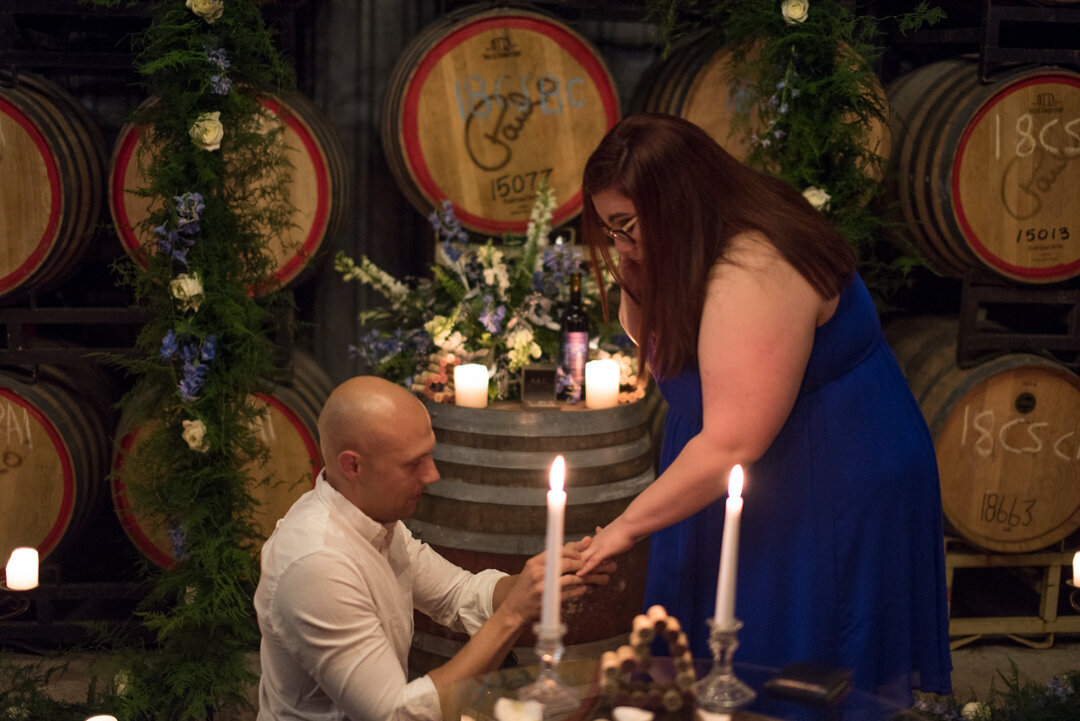 allison-charles-messina-hof-proposal_009
