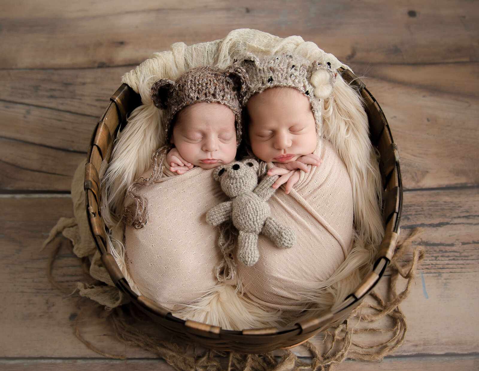 Twin newborns posed at our Rochester, NY studio.