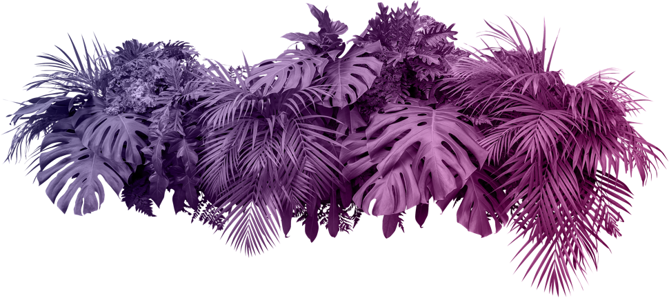 event-colored-palms