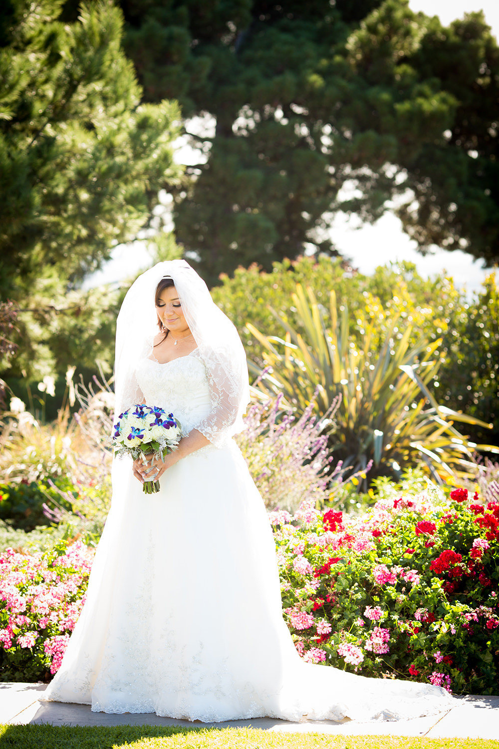 bride at the immaculata