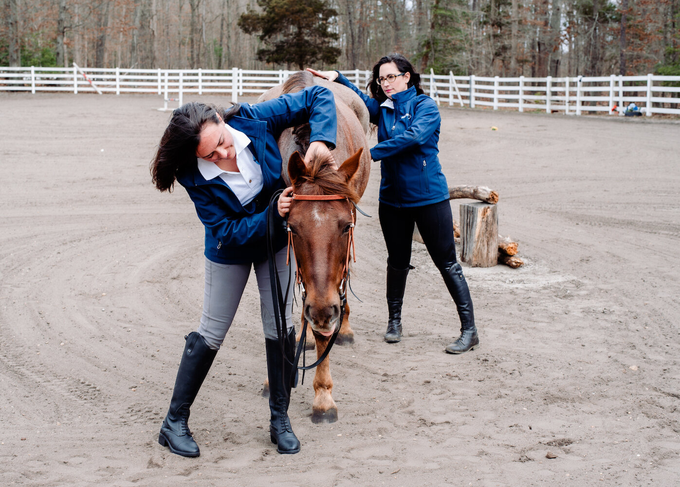 Farm-and-Fir.Animal-Bodywork-and-Aromatherapy-Equestrian-Brand-Shoot.14