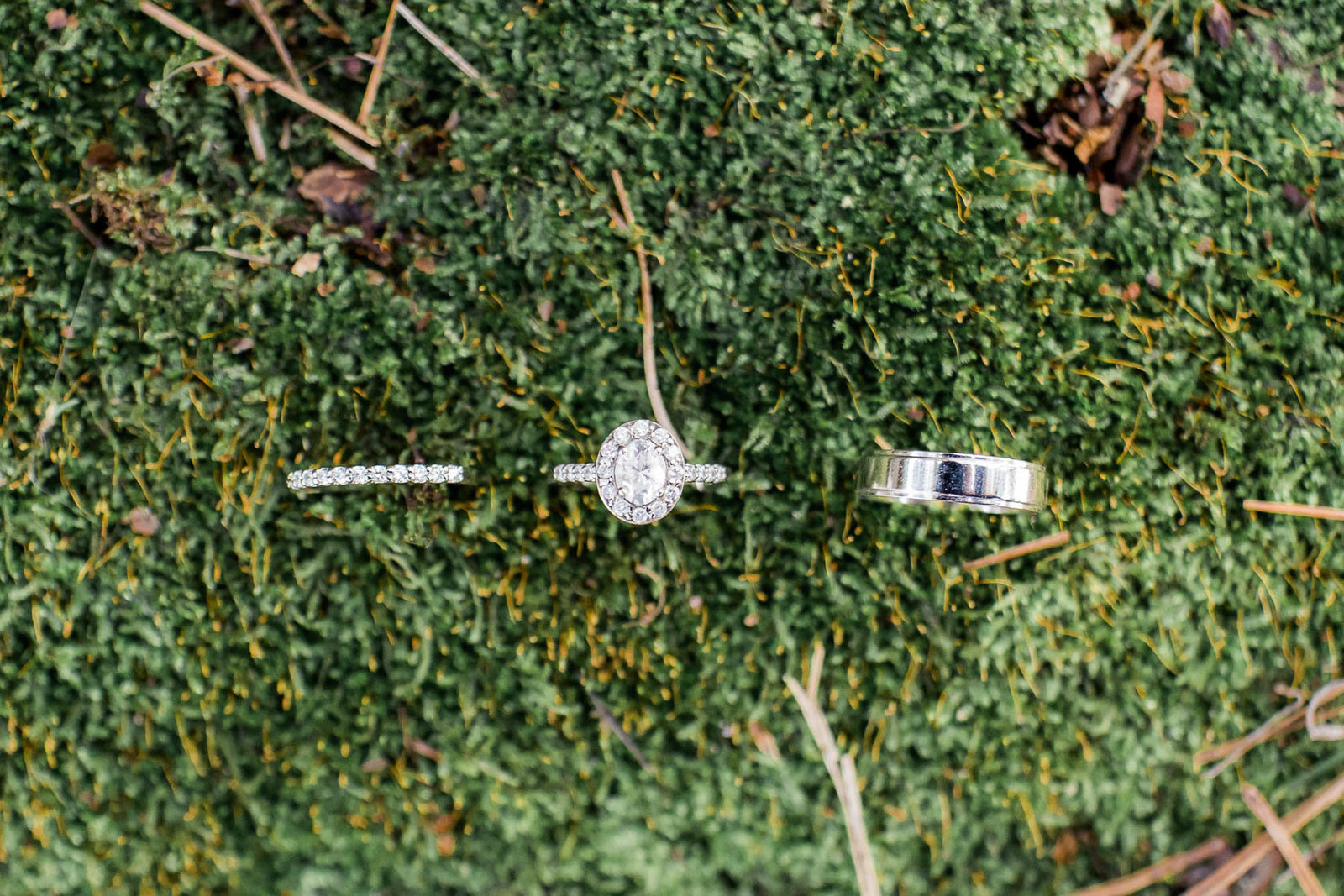 Rings stand in moss, I'on Creek Club, Mt Pleasant, South Carolina. Kate Timbers Photography.