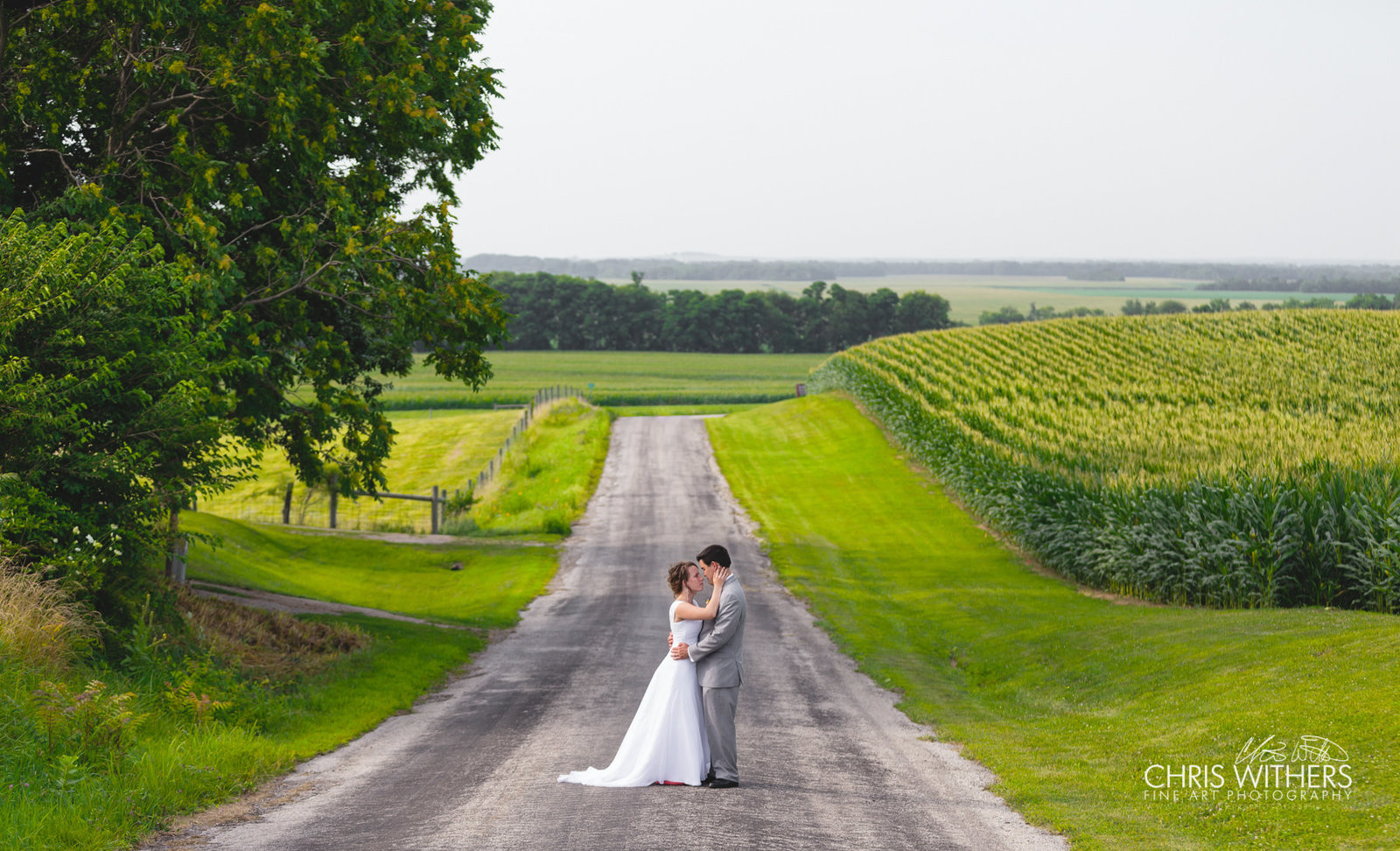 Springfield Illinois Wedding Photographer - Chris Withers Photography (35 of 159)