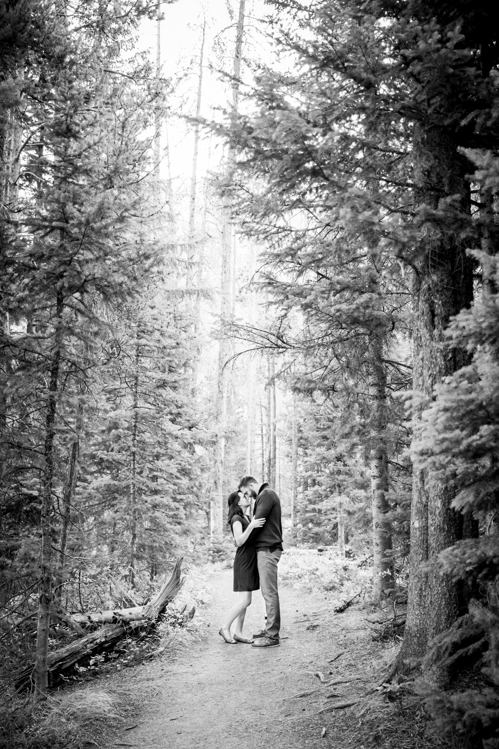 Engagement session in the trees Jackson Hole WY