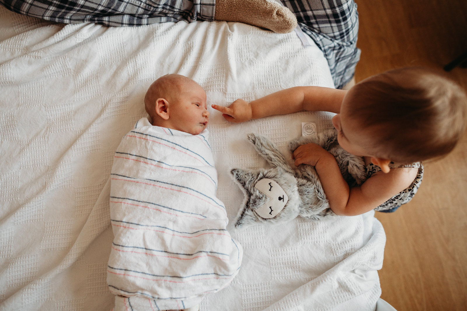 toddler sister touches baby brother in fresh 48 boston photography session