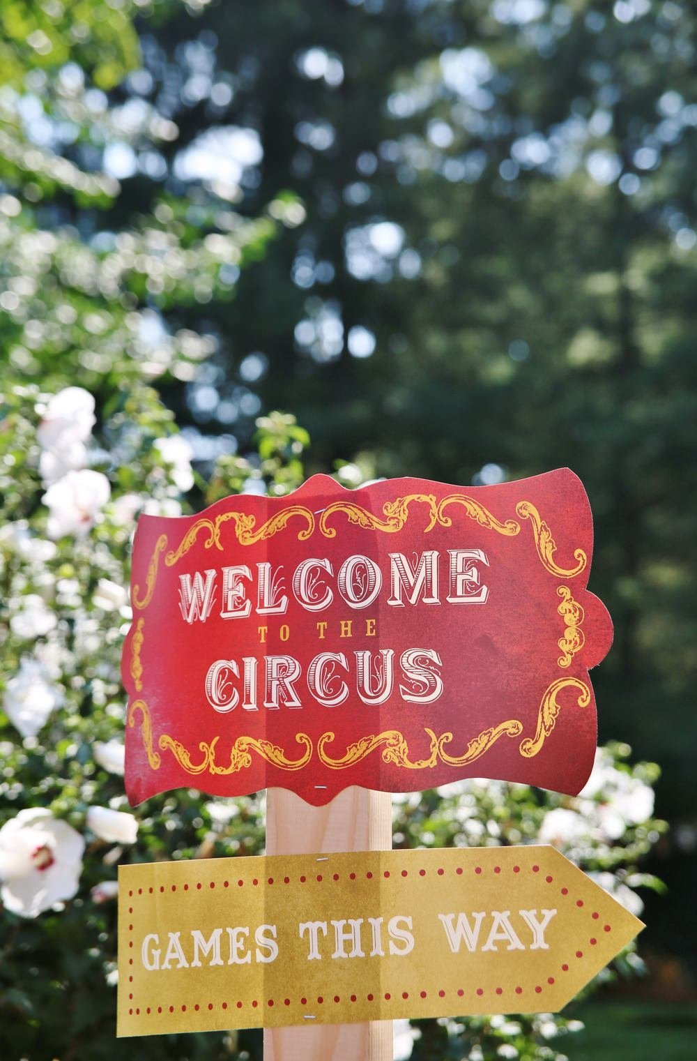 ct_party_planner_circus_birthday_0017