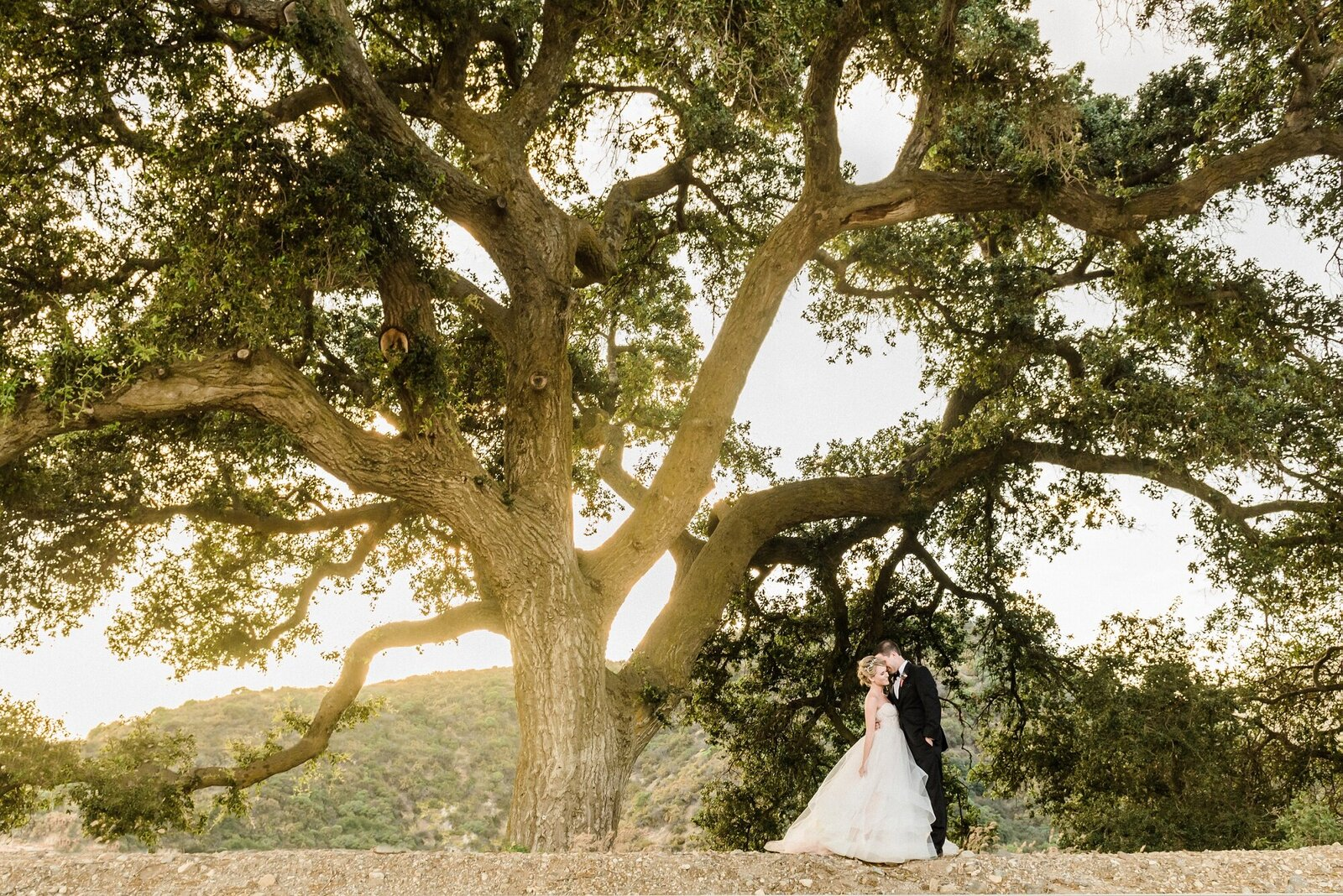 Ojai Wedding Photographer 049
