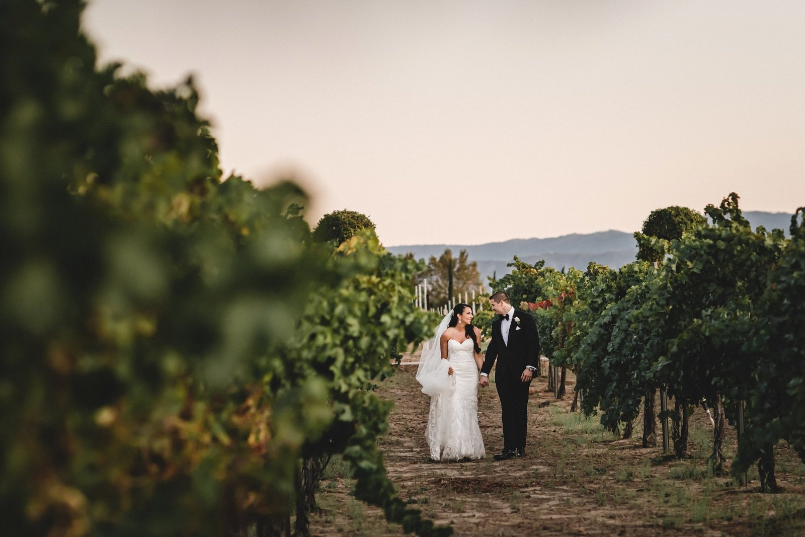 Ponte Winery Wedding Temecula Wedding Photographer 037
