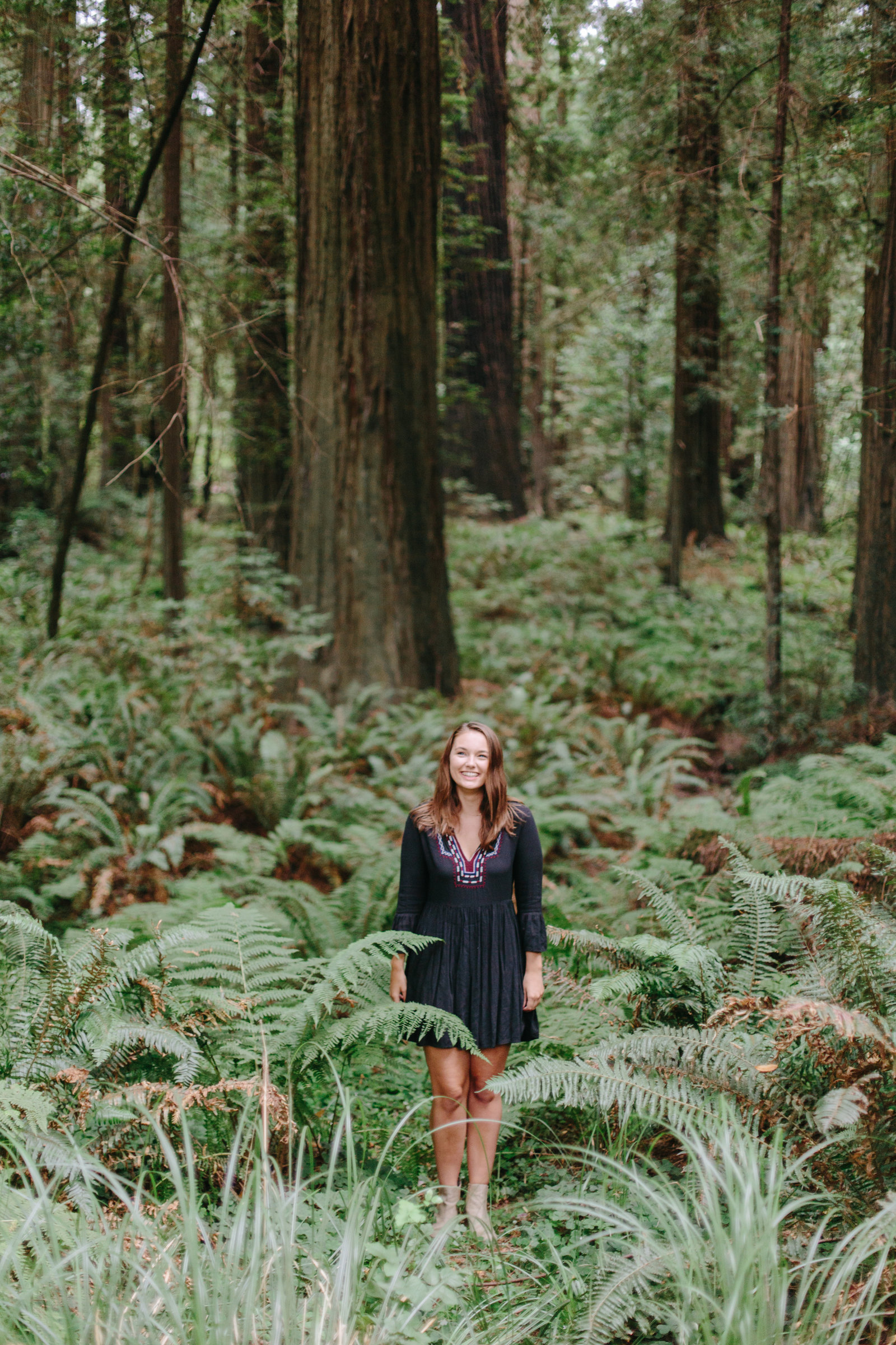Redwood National Park Avenue of the Giants Engagement Session -7384