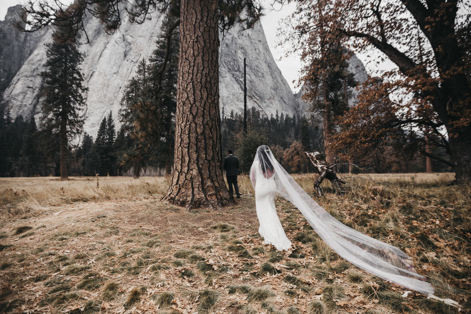 athena-and-camron-yosemite-elopement-wedding-photographer-elegent-valley-wedding6