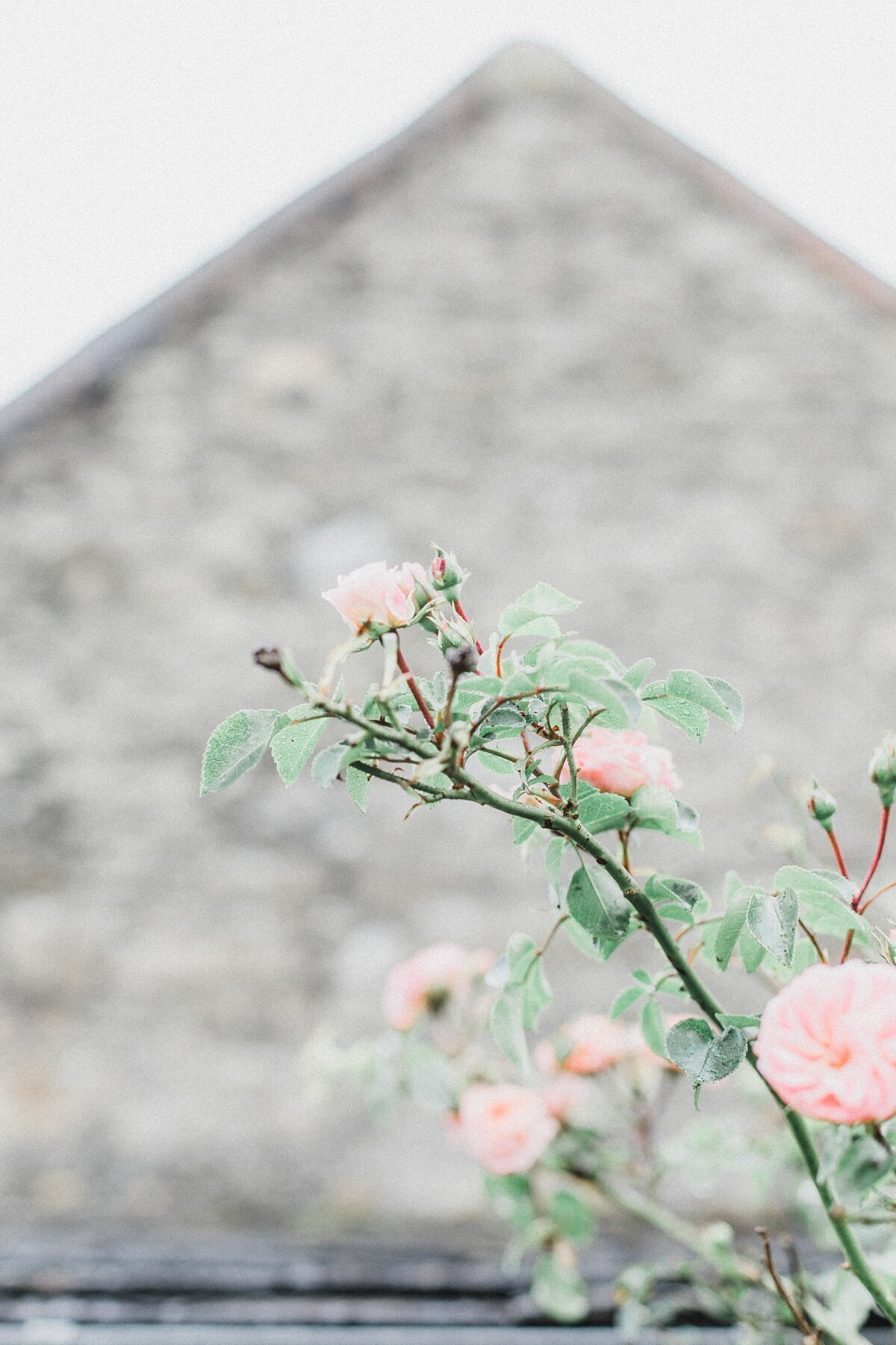 jc-emily-french-countryside-wedding_0003
