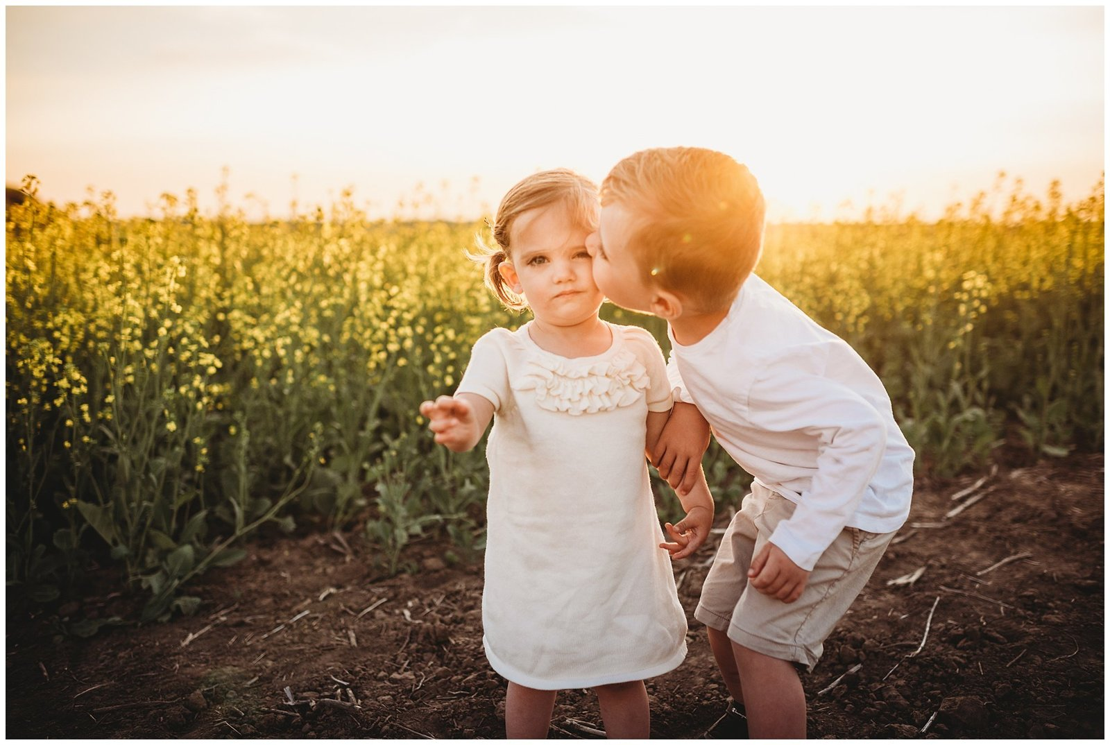 big brother kissing baby sister in field at sunset Emily Ann Photography Seattle Family Photographer
