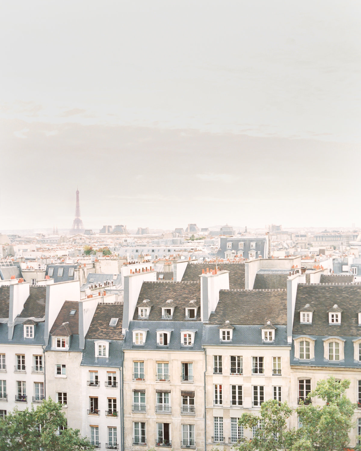 Paris-Wedding-Photographer-Film-Photographer-France-Molly-Carr-Photography-26