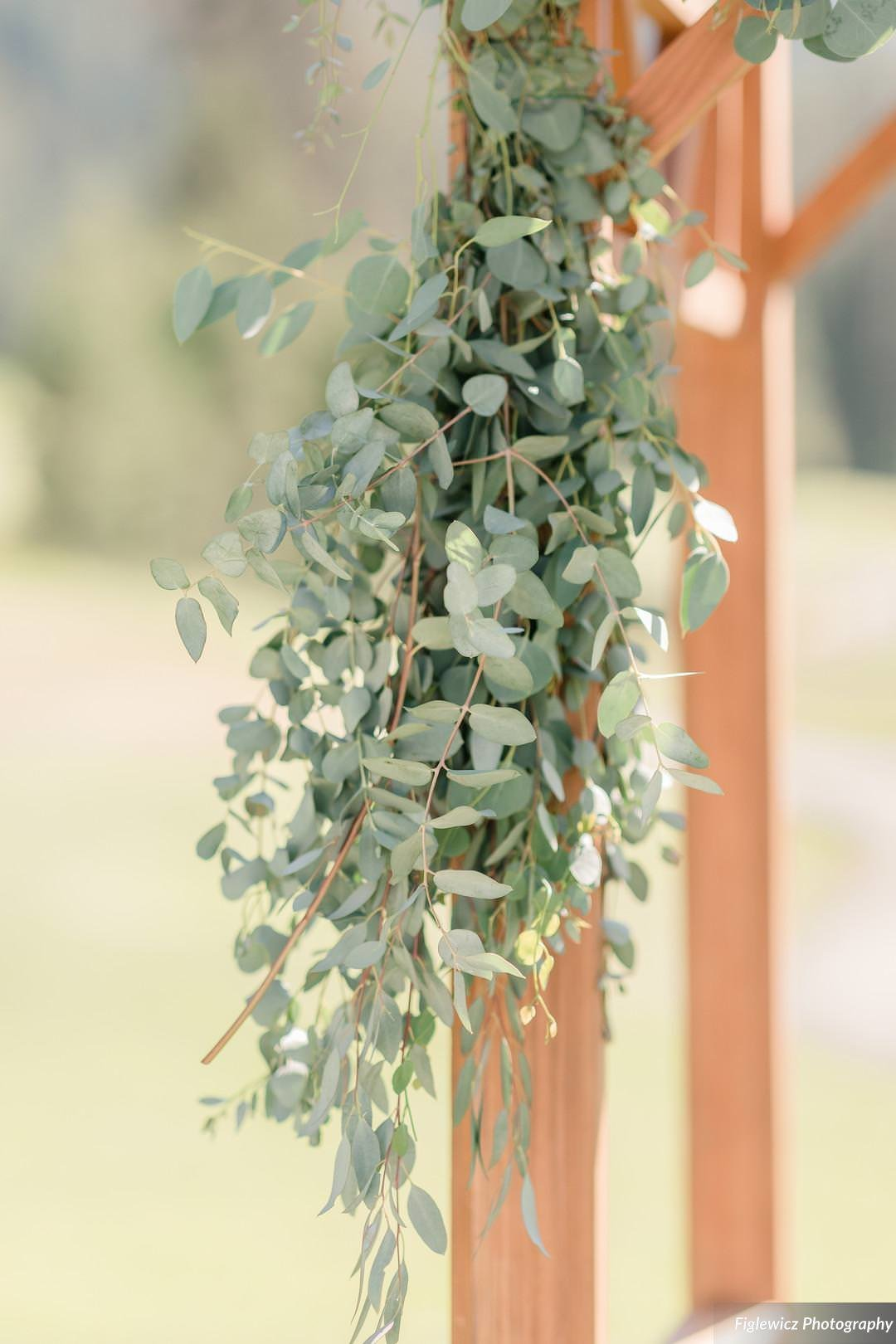 Garden_Tinsley_FiglewiczPhotography_LakeTahoeWeddingSquawValleyCreekTaylorBrendan00080_big