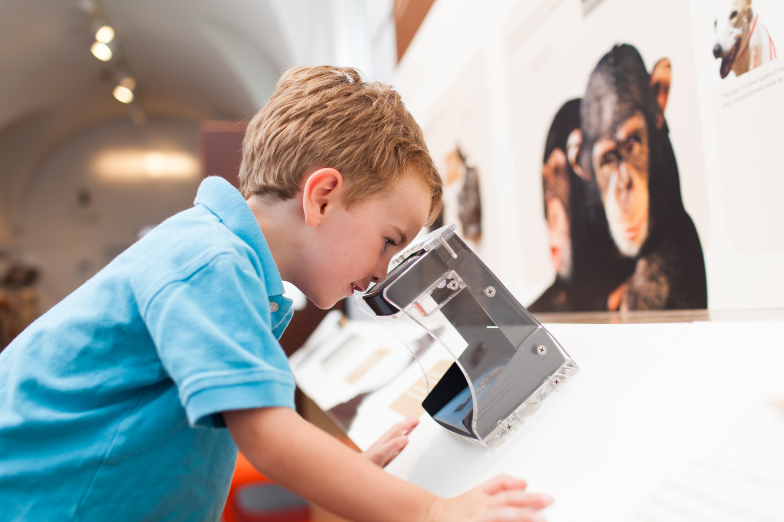 marketing image of a child enjoying the Penn museum in philadelphia